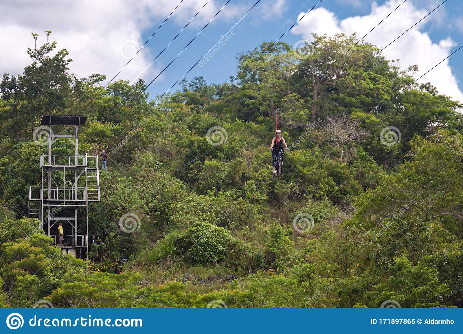 Woman Riding A Bike On Zip Line In The Jungle Forest Editorial Image Image Of Freedom Dangerous 171897865