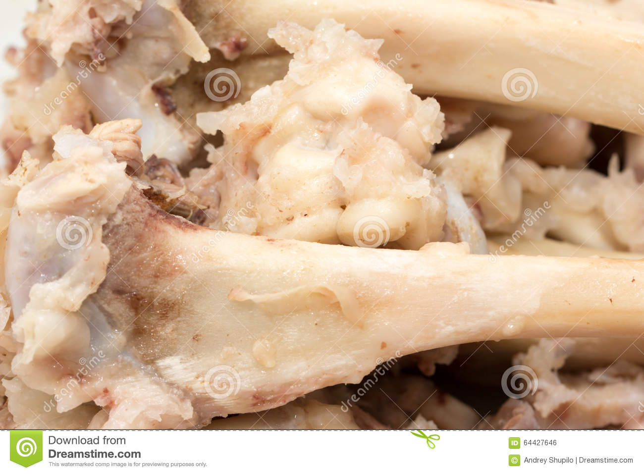 Can Dogs Eat Boiled Chicken Bones