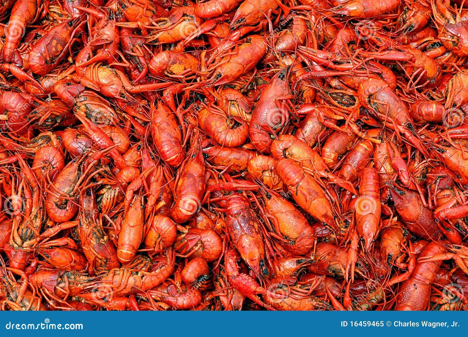boiled crawfish royalty free stock photo image 16459465 Art Shrimp Boil Shrimp Clip Art
