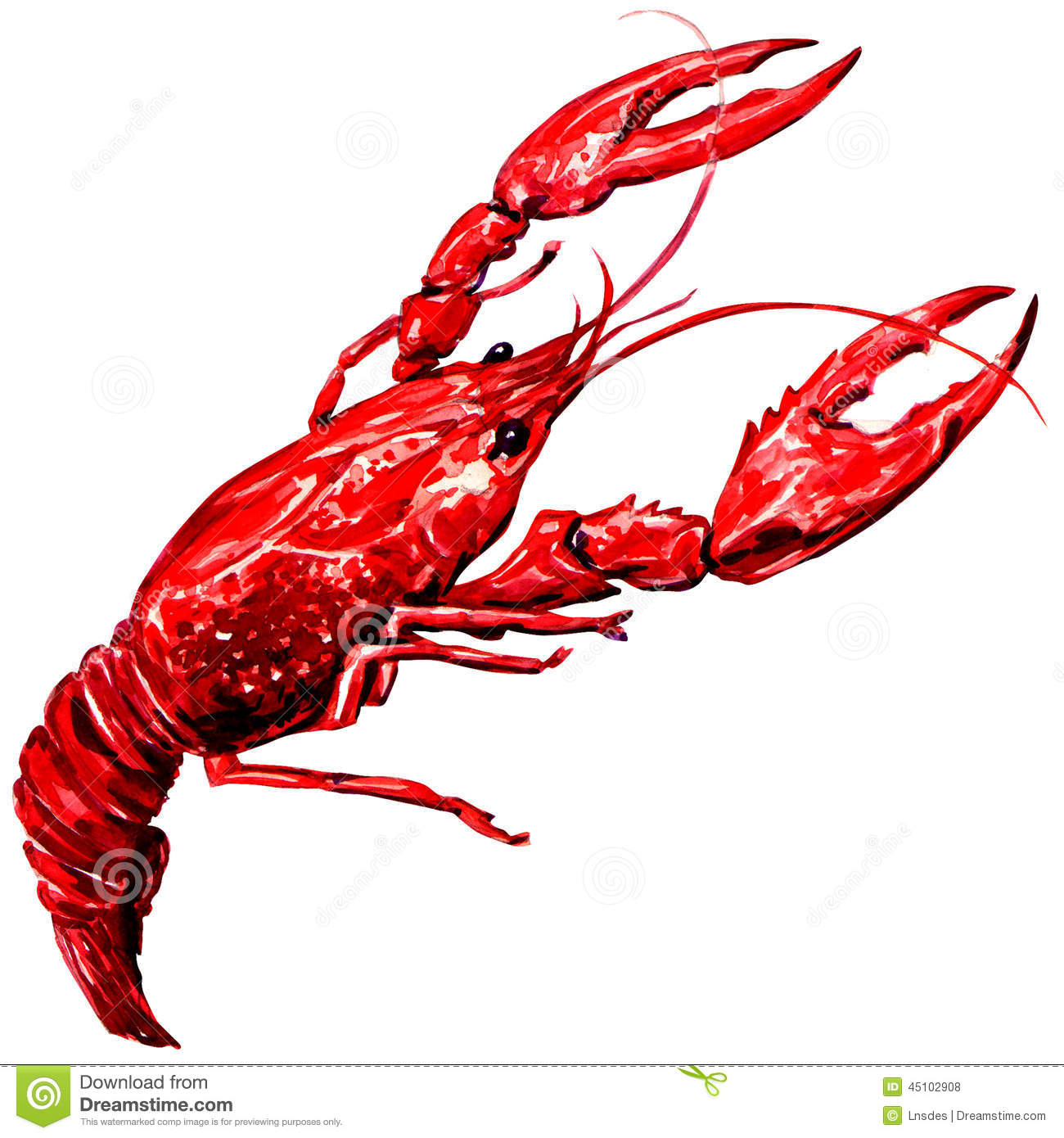 Crawfish Cartoons, Illustrations & Vector Stock Images - 1076 Pictures to download from ...