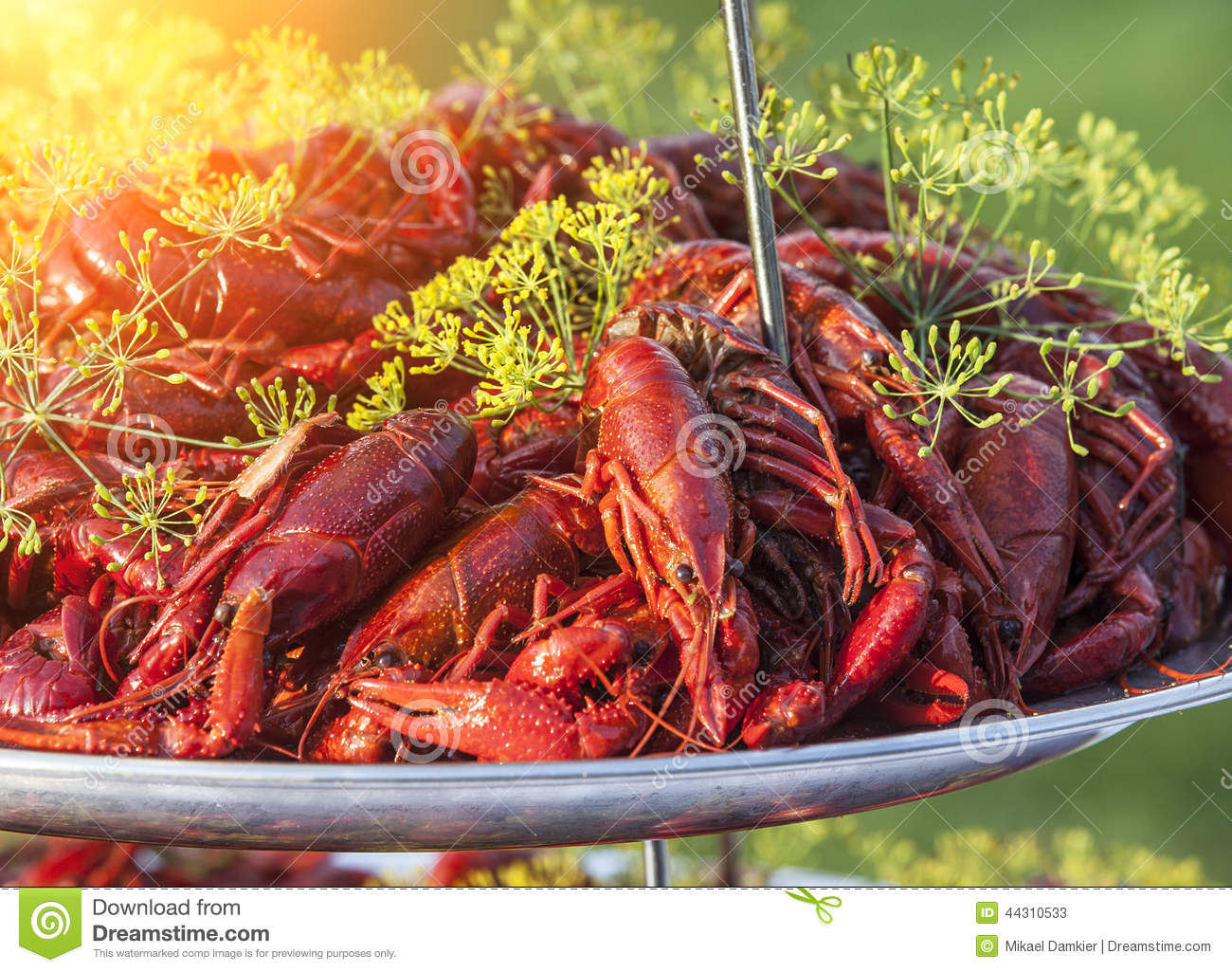 steamed crawfish red boiled crayfish on the white wooden crawfish boil pot clipart crawfish boil clipart free