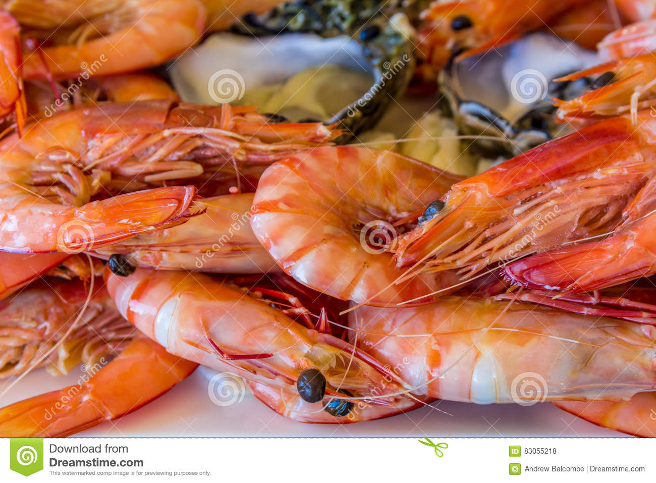 Boiled Tiger Prawns And Raw Oysters Stock Photo - Image of oyster