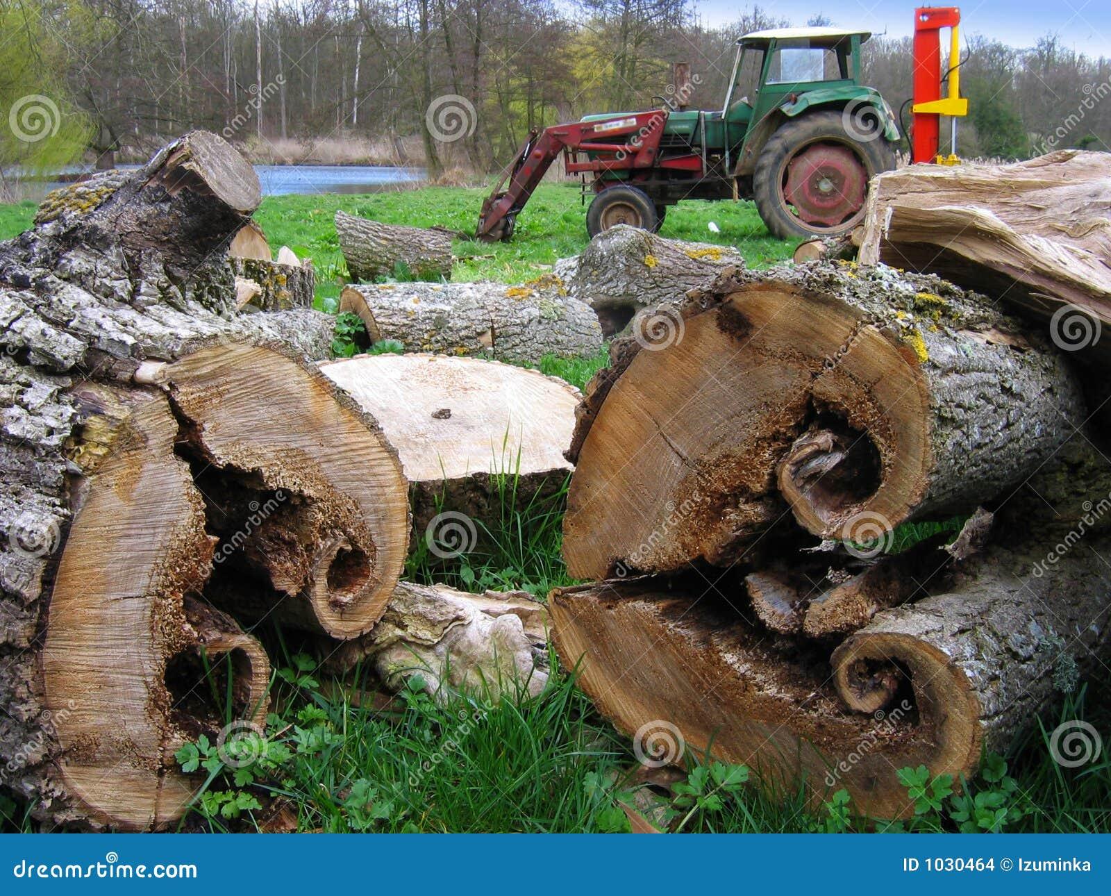 Bois coupe avec tracteur stock images image 1030464 - Couper bois avec meuleuse ...