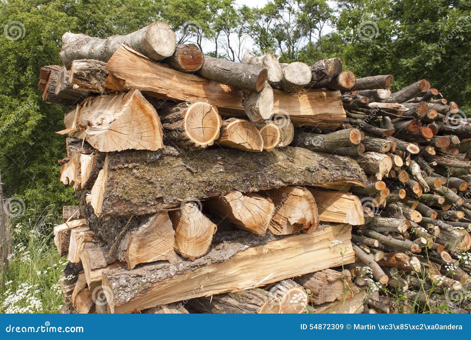 bois de chauffage coup pour l 39 hiver le bois du prunier photo stock image 54872309. Black Bedroom Furniture Sets. Home Design Ideas