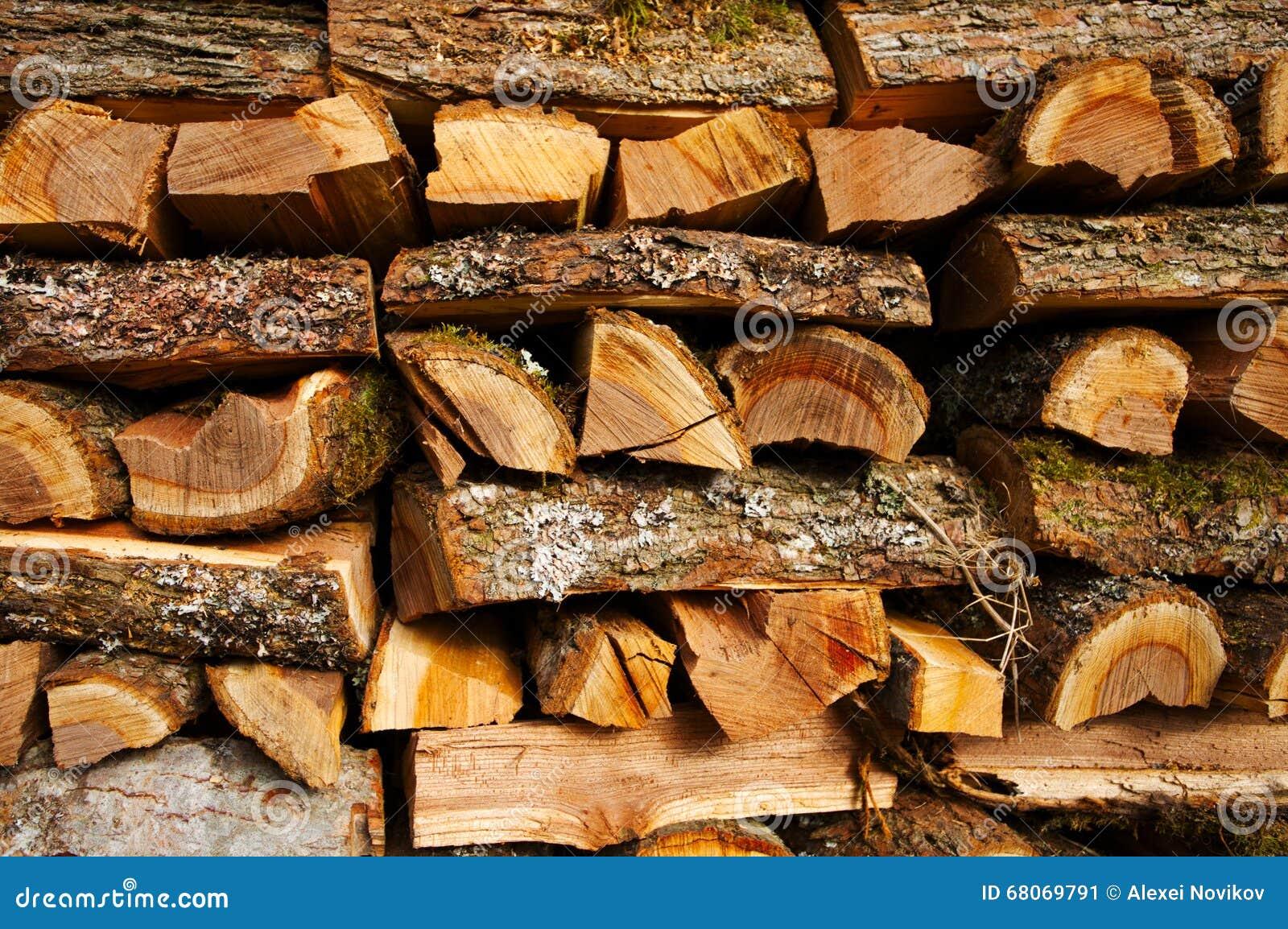 bois de chauffage d 39 orme image stock image du campagne