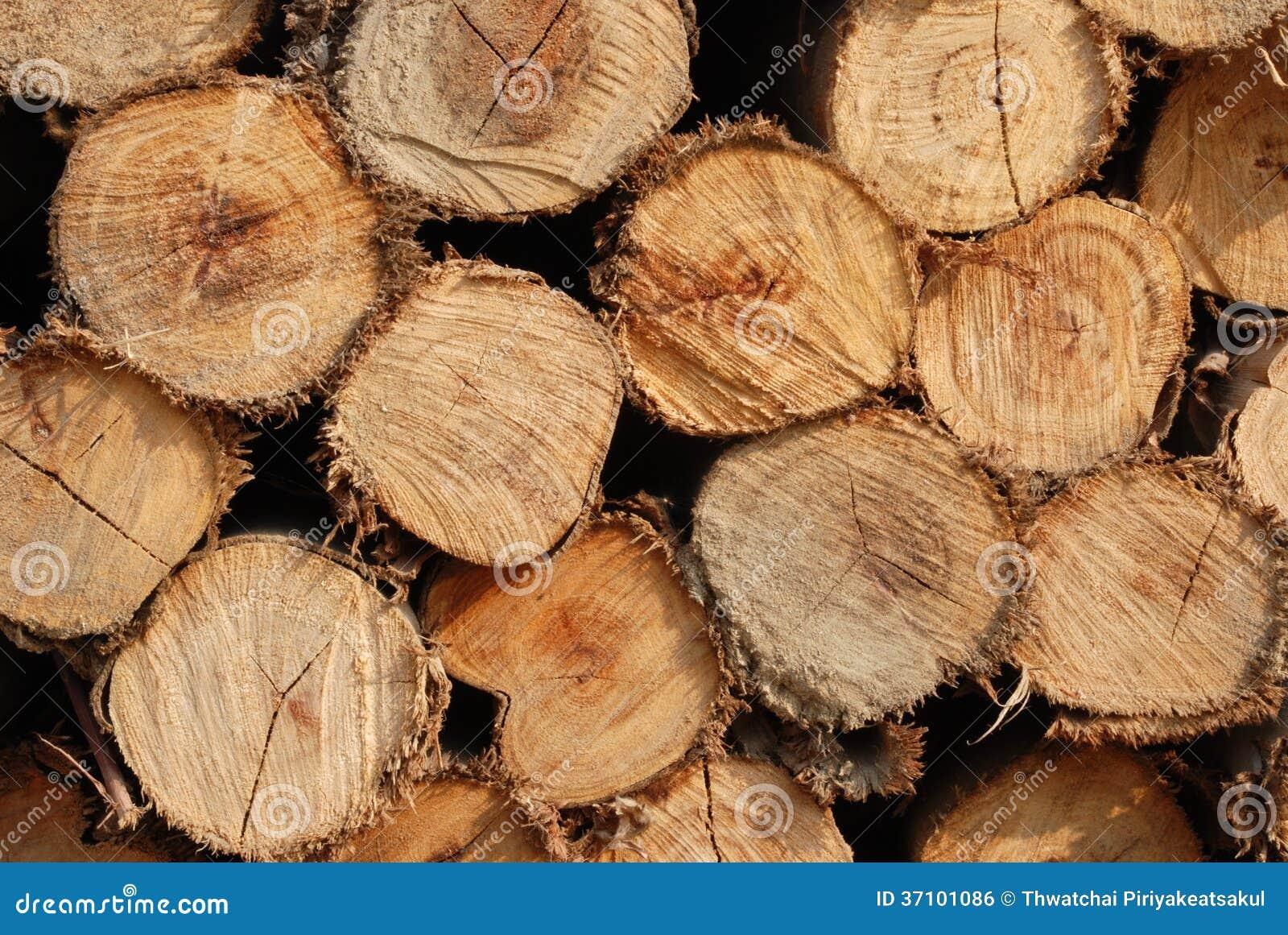 thumbs.dreamstime.com/z/bois-de-construction-d-arbre-d-eucalyptus-37101086