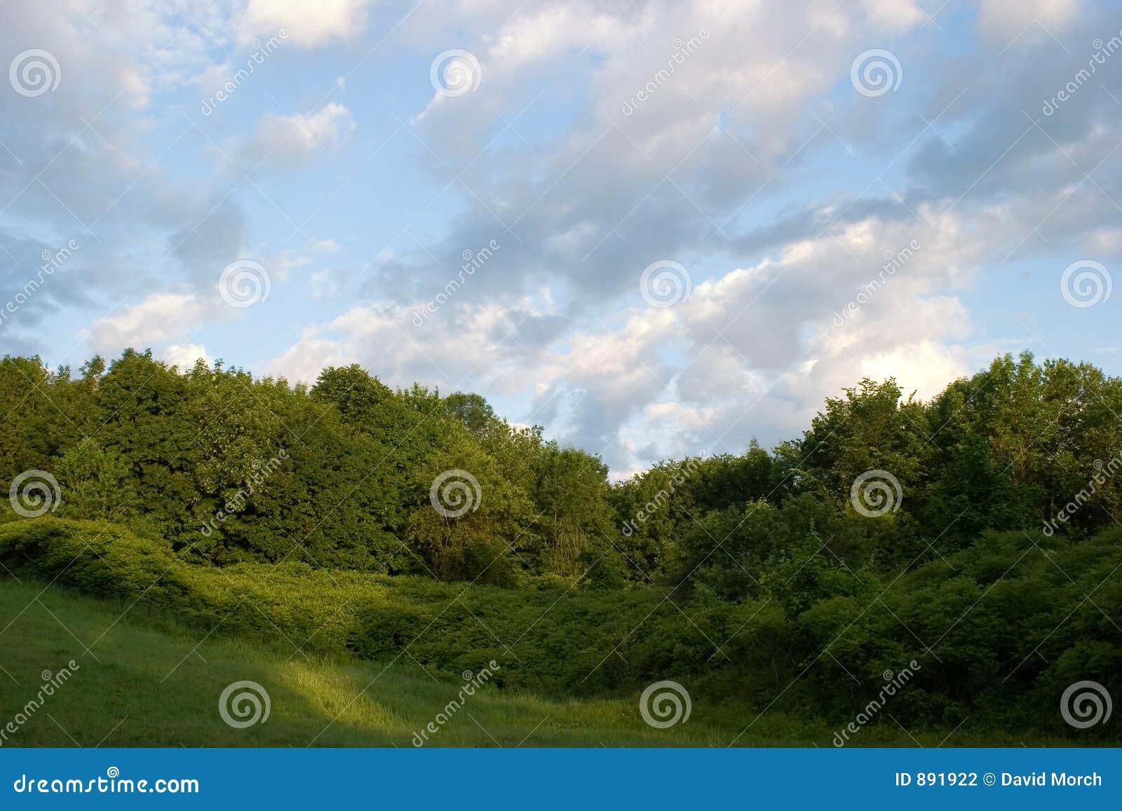 Bois De Liesse park