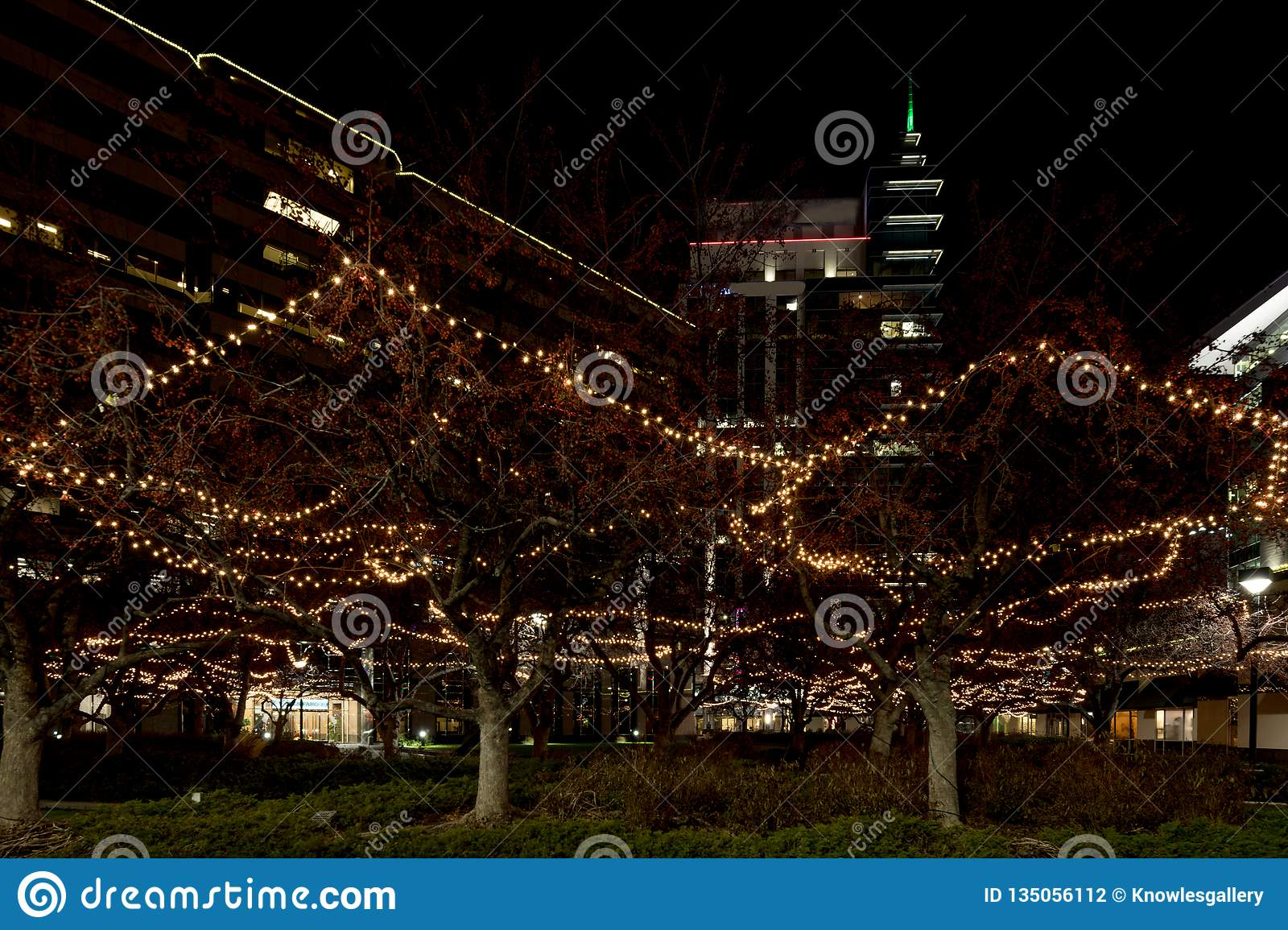 Christmas Lights Boise.Boise Grove Square With Tall Buildings And Christmas Light