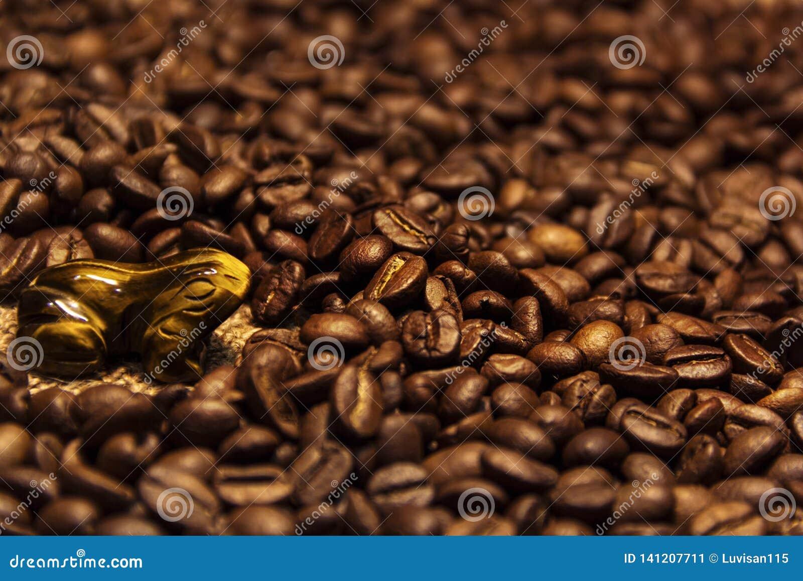 Boisson aromatique de grains de café excellente pendant le matin
