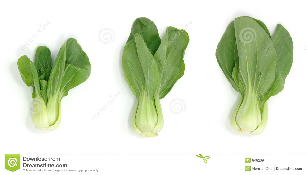 how to clean bok choy