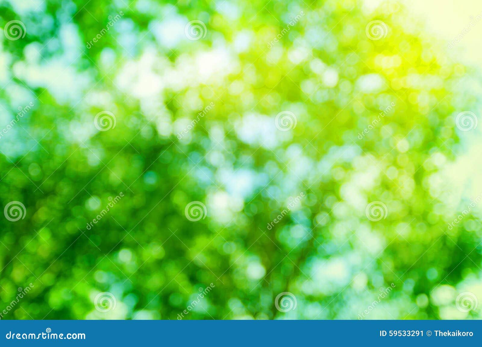 Bokeh abstrato da árvore do verde do fundo, natureza do borrão