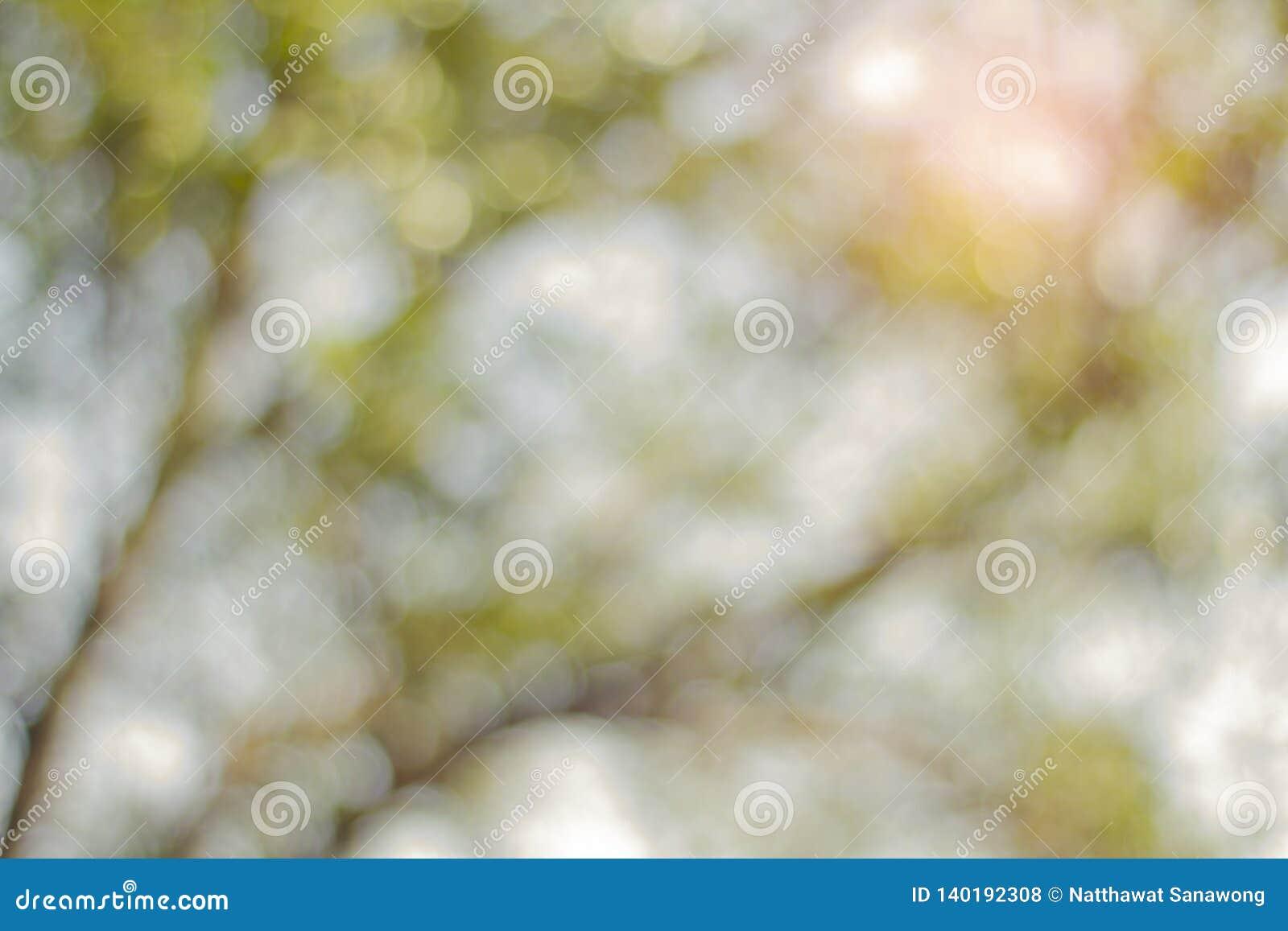 Bokeh azul abstracto, calidad visual de las áreas del hacia fuera-de-foco de una imagen fotográfica, especialmente según lo rendi