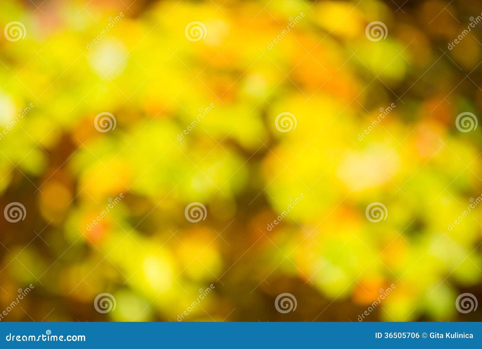 Bokeh d automne
