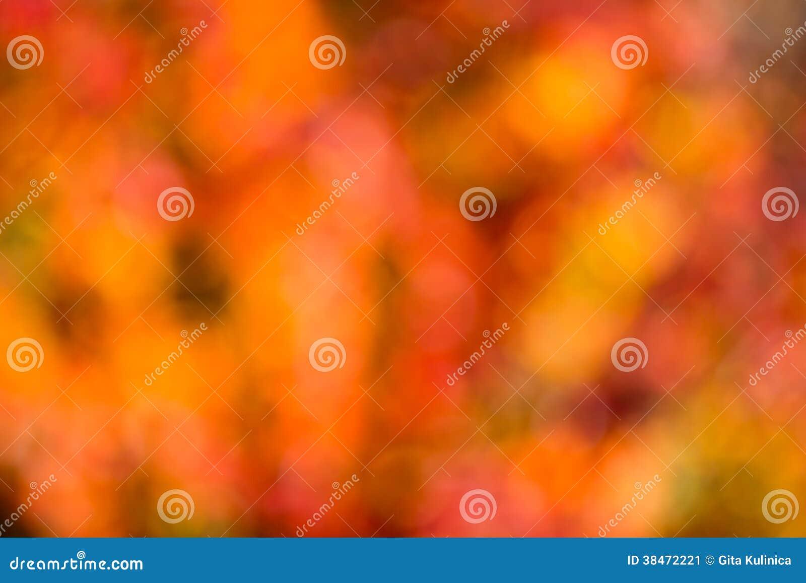 Bokeh d automne.