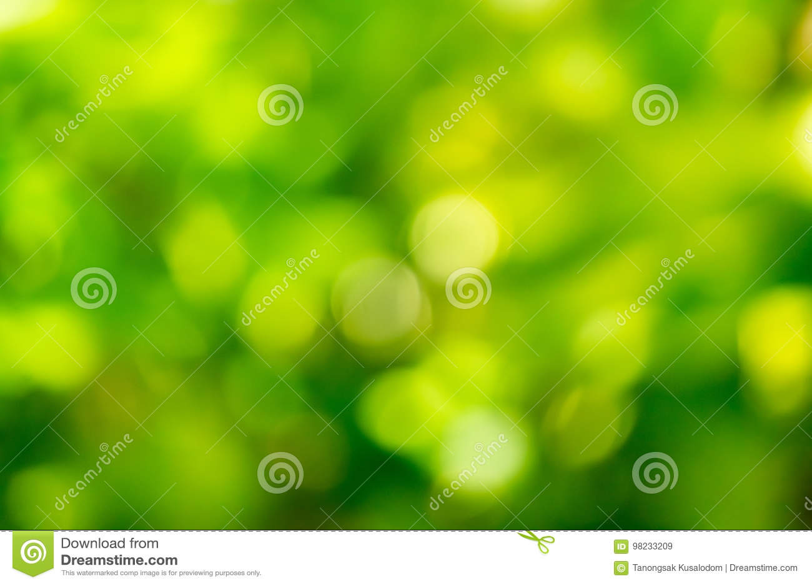 Bokeh de hojas