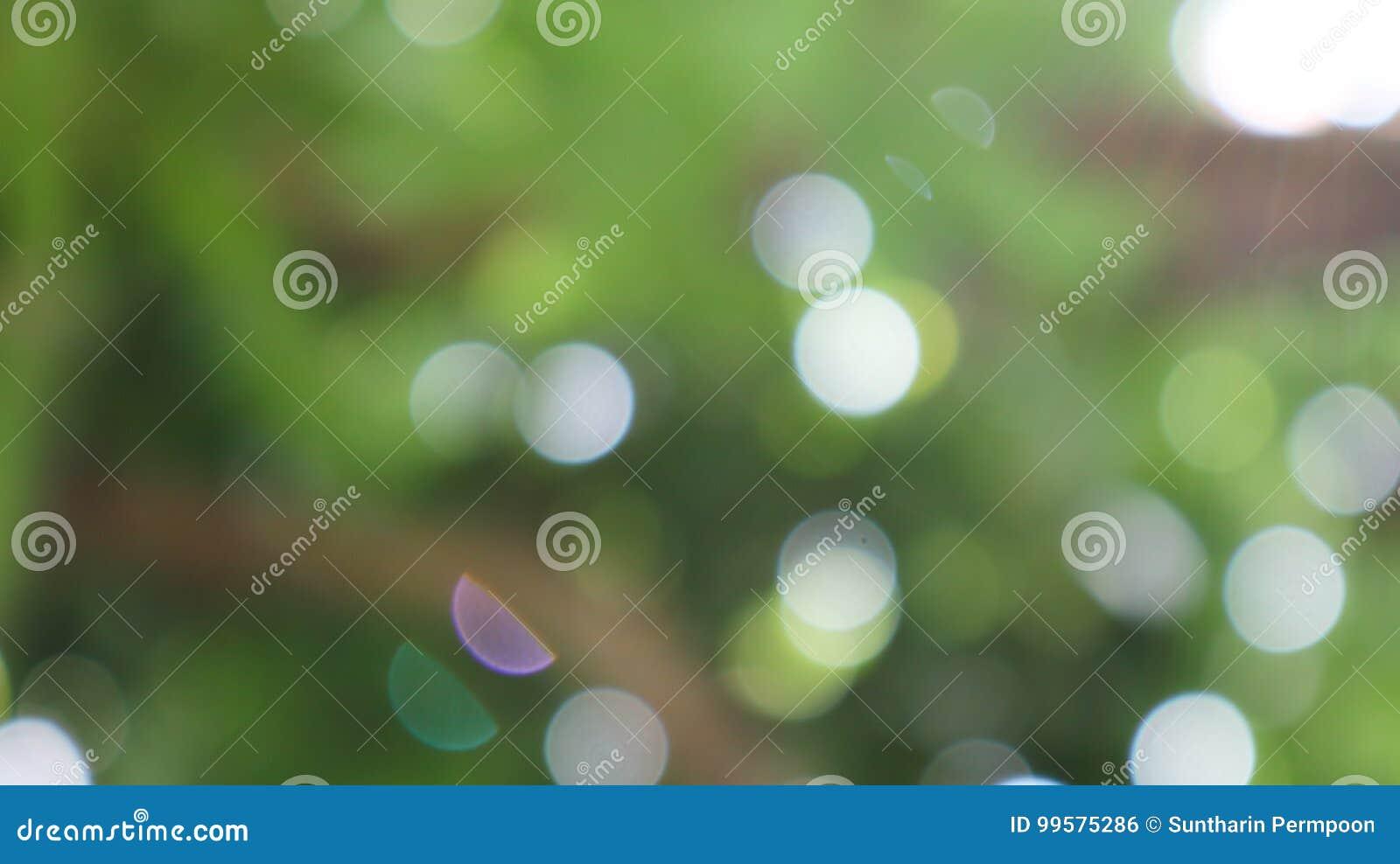 Bokeh delle foglie e della luce solare su fondo verde e nero dime
