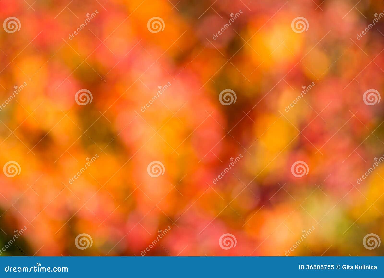 Bokeh di autunno