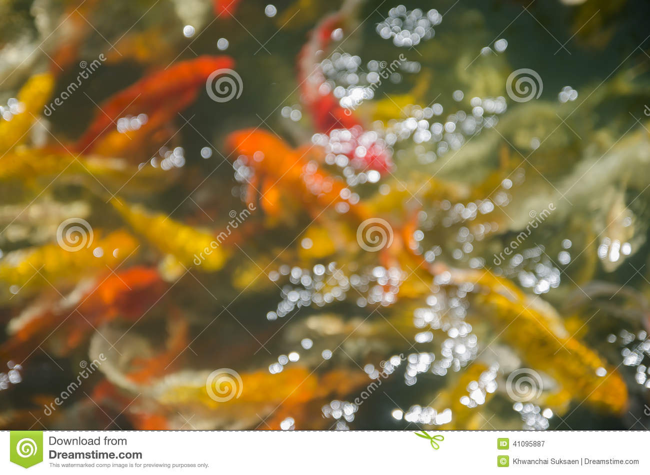 Bokeh of fancy koi fish pond stock photo image 41095887 for Surface fish ponds