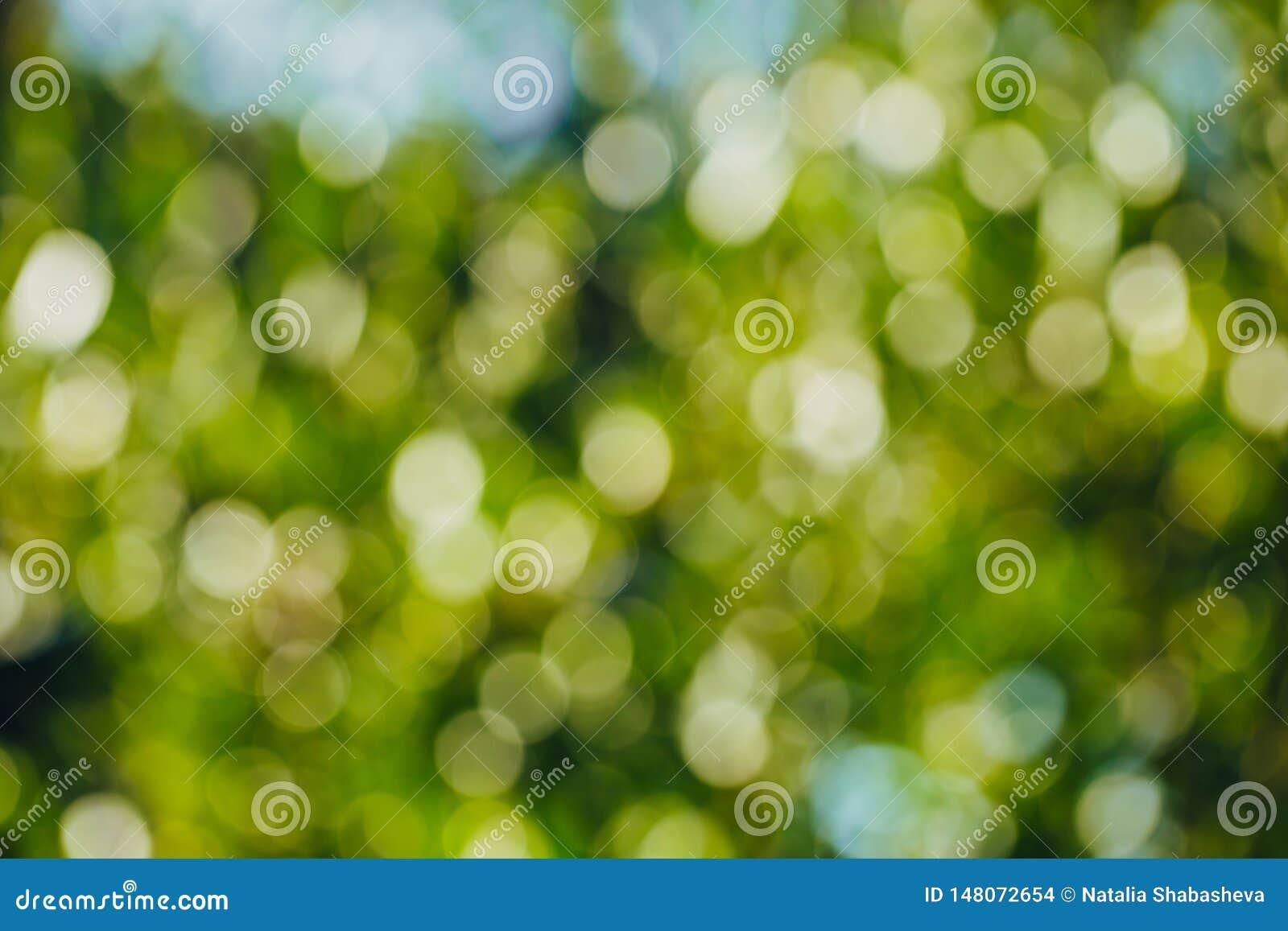 Bokeh verde dal fondo del fuoco dalla foresta della natura