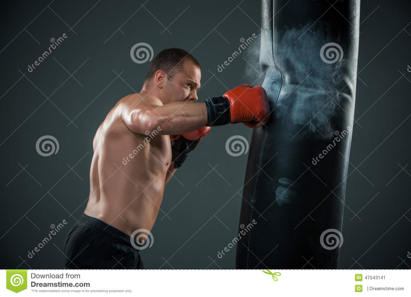 Boksera młody wojownik