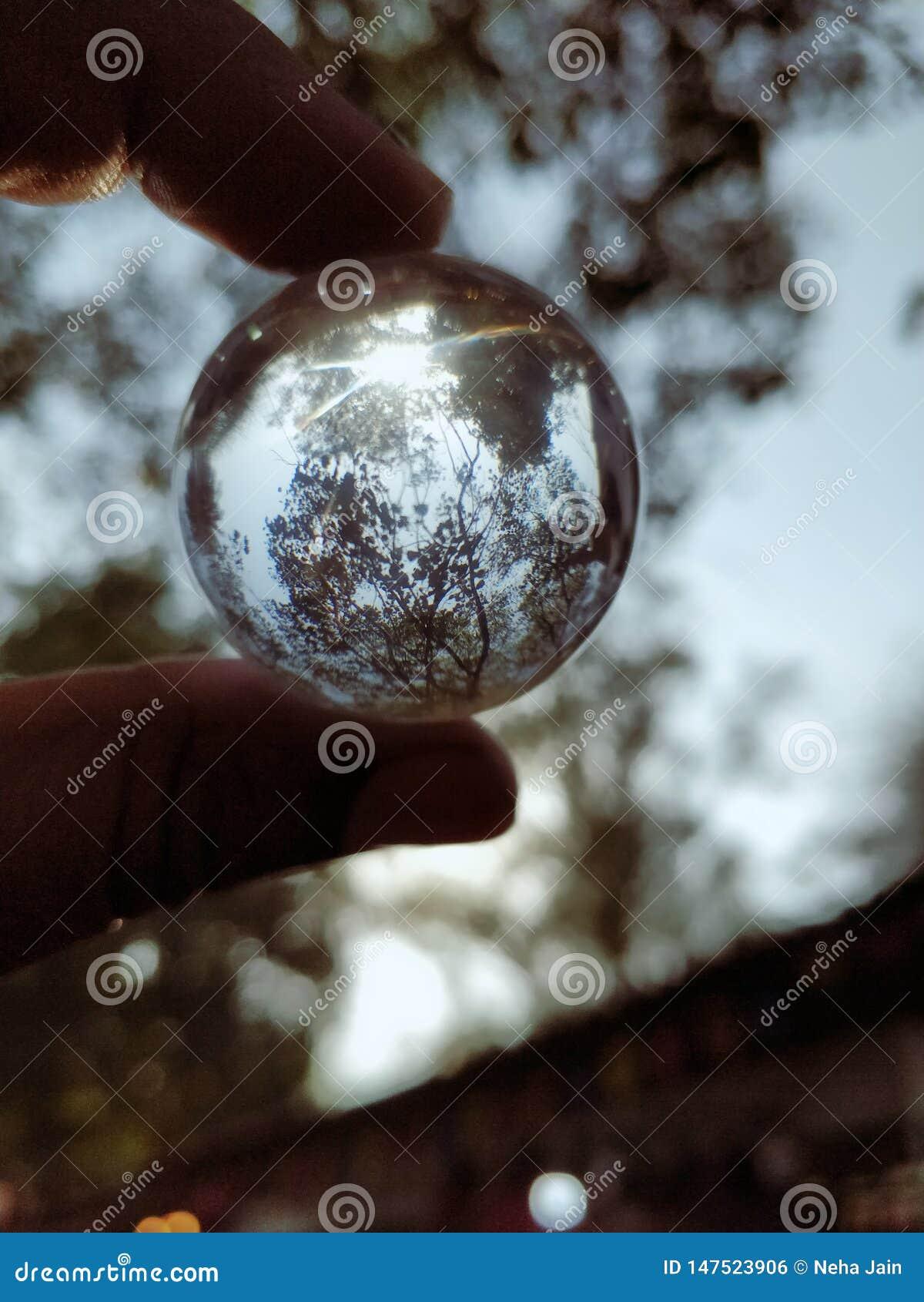 Bola de cristal que muestra la naturaleza