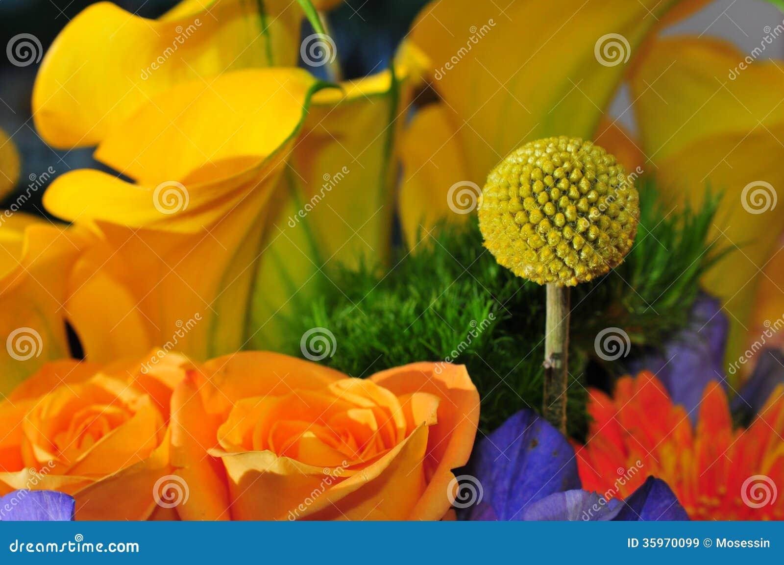Bola de la flor