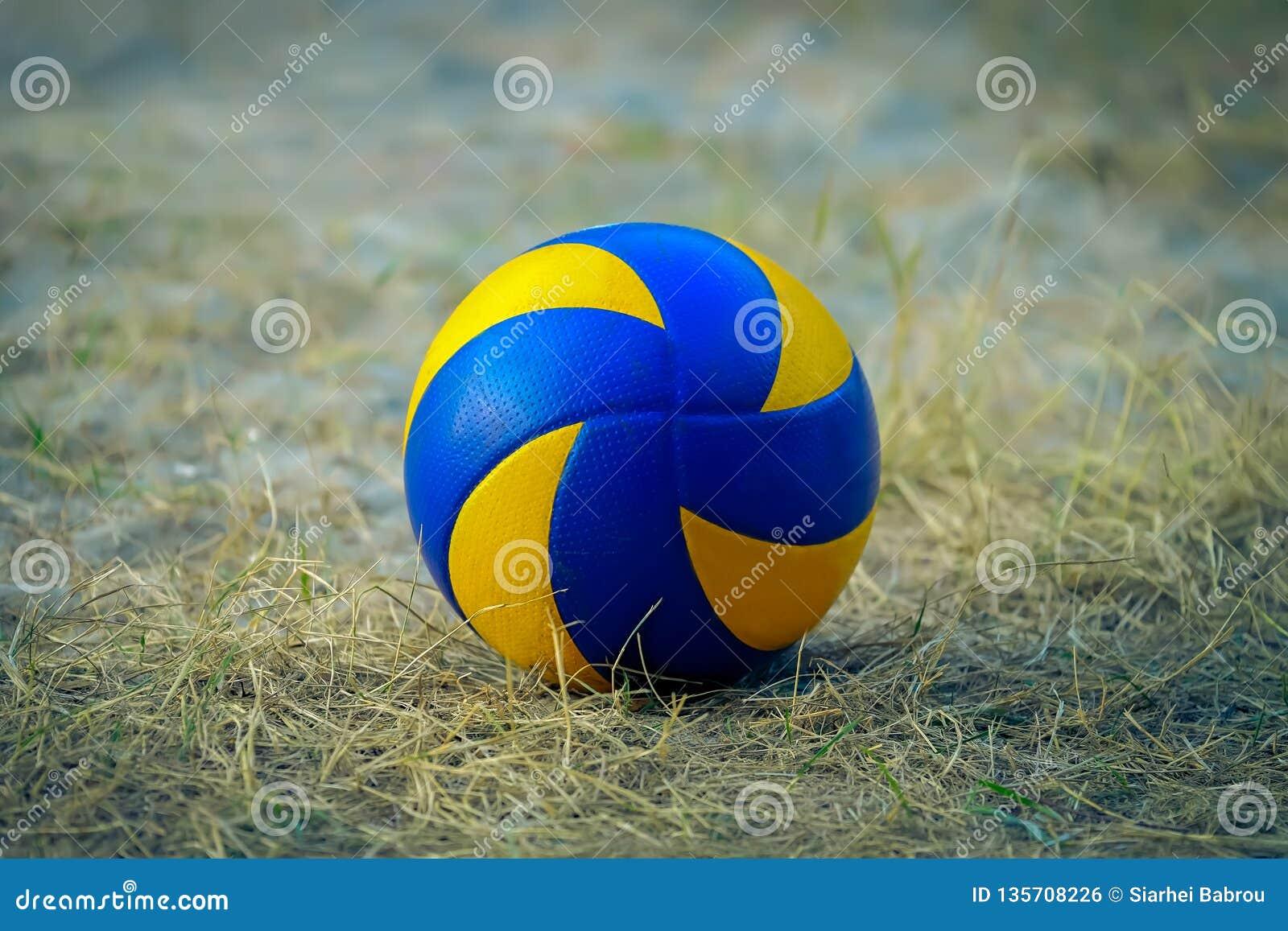 Bola dos esportes em um campo de grama