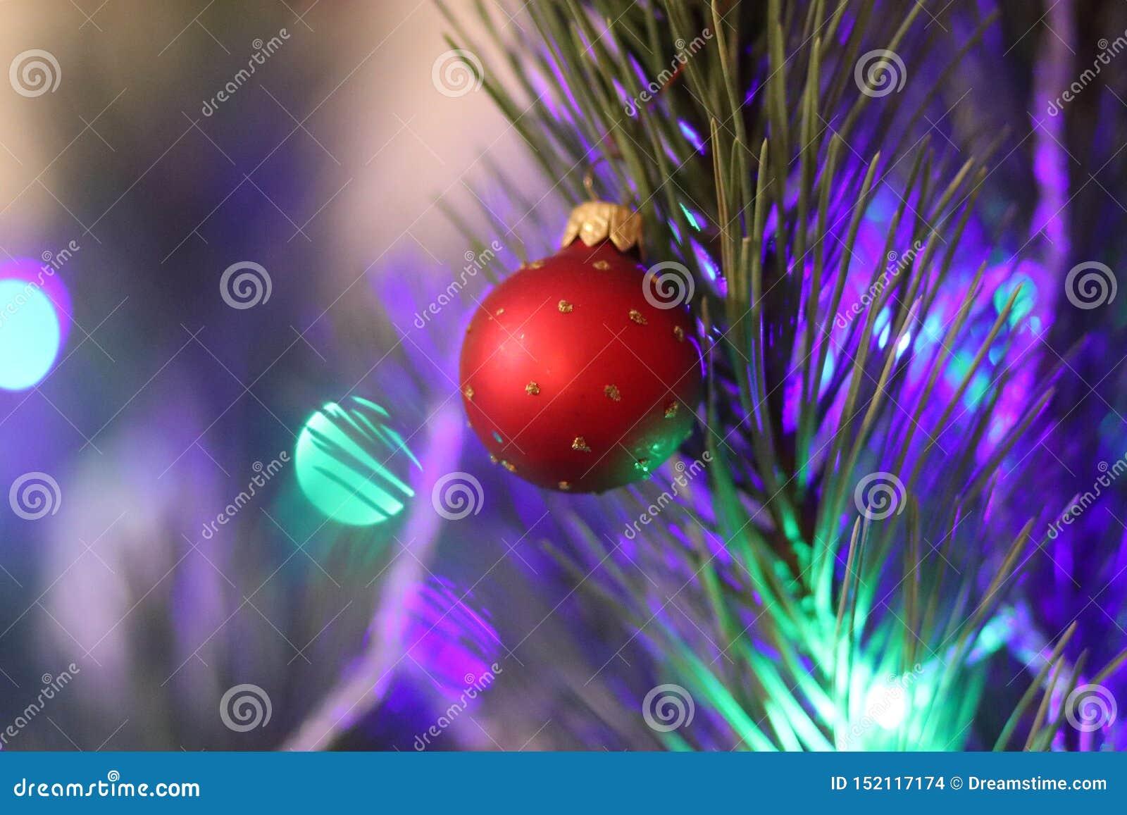 Bola vermelha da árvore do ano novo do Natal com luzes de Natal