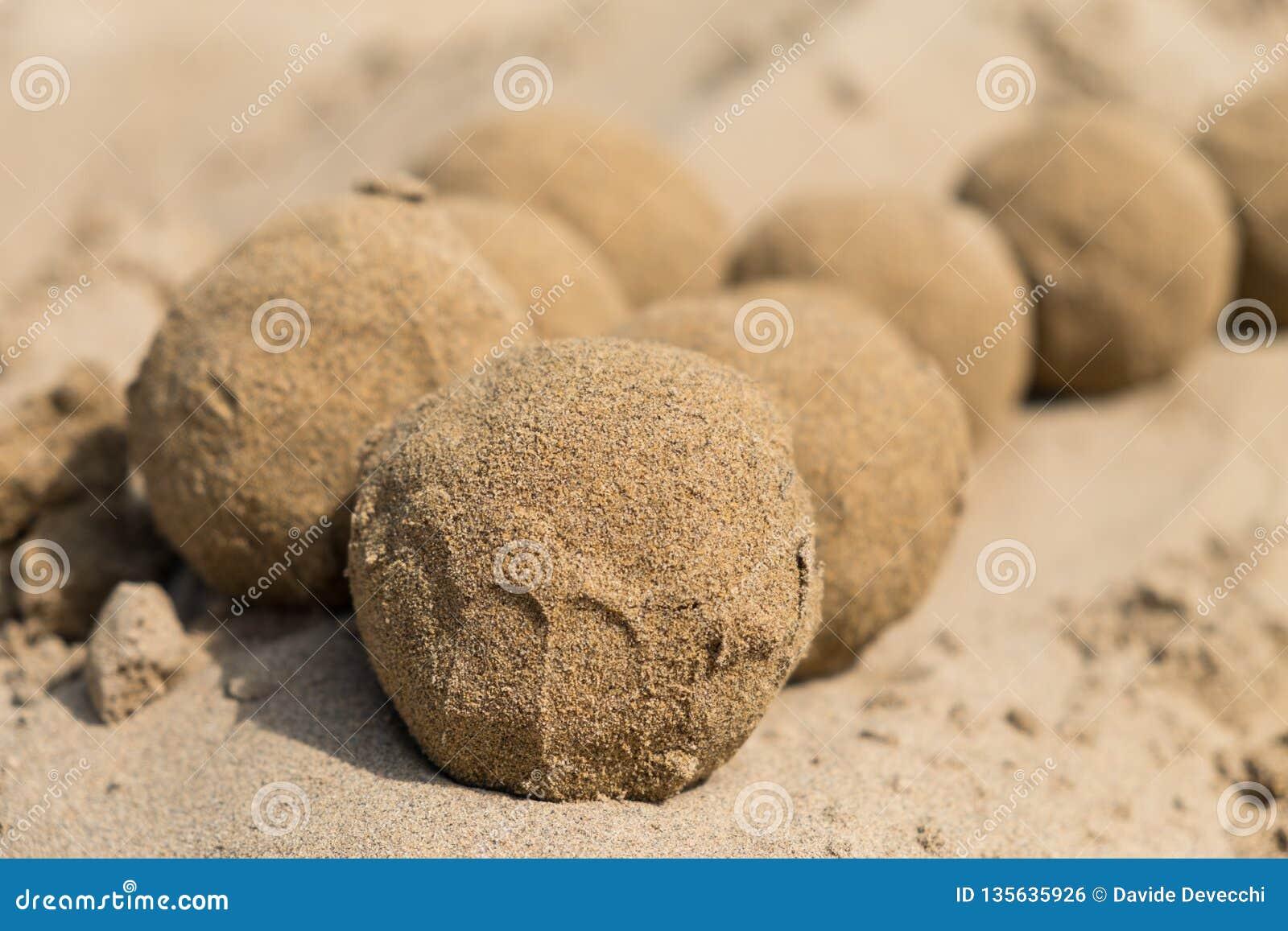 Bolas de la arena en la playa