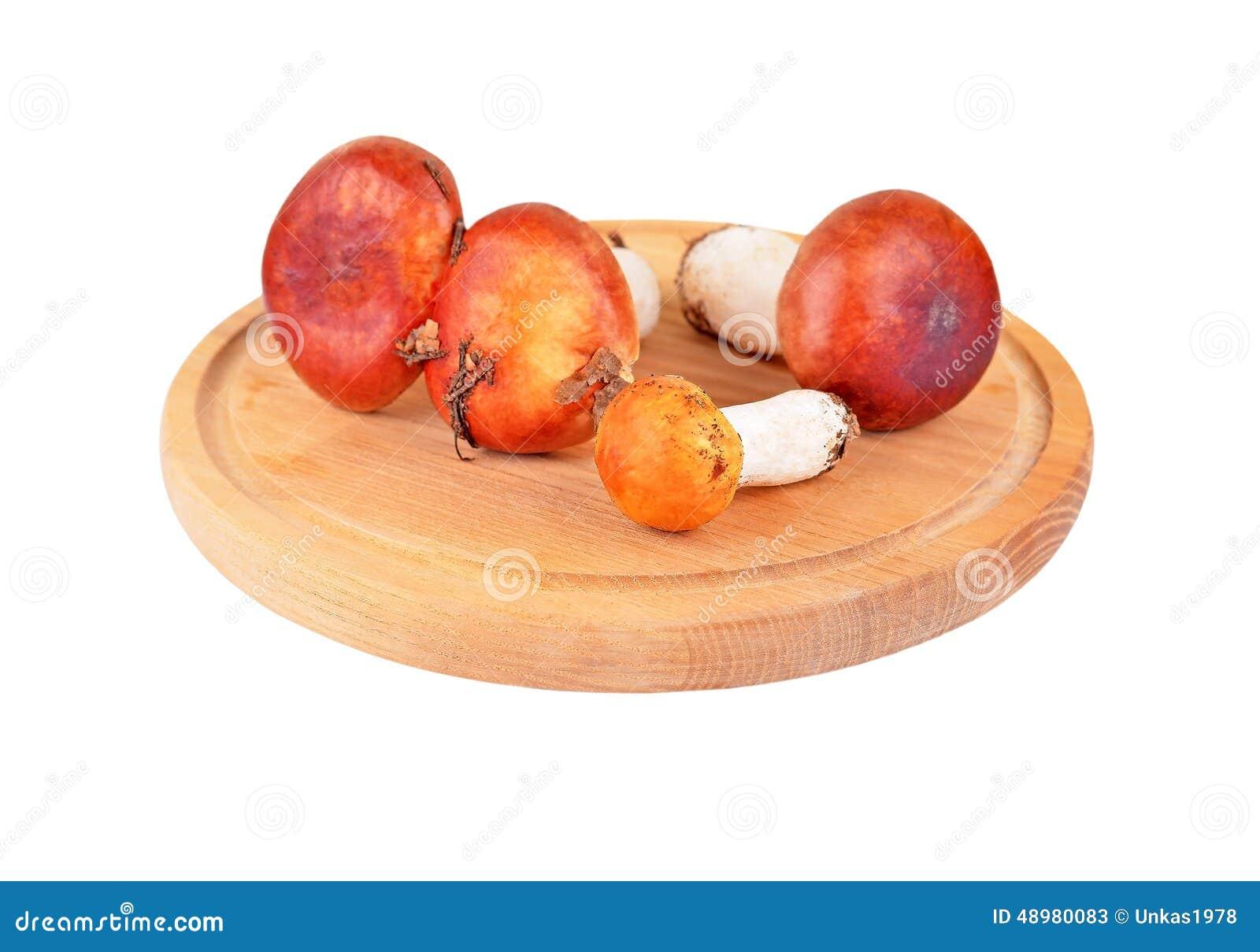 Boletus edulis mushroom on wooden board