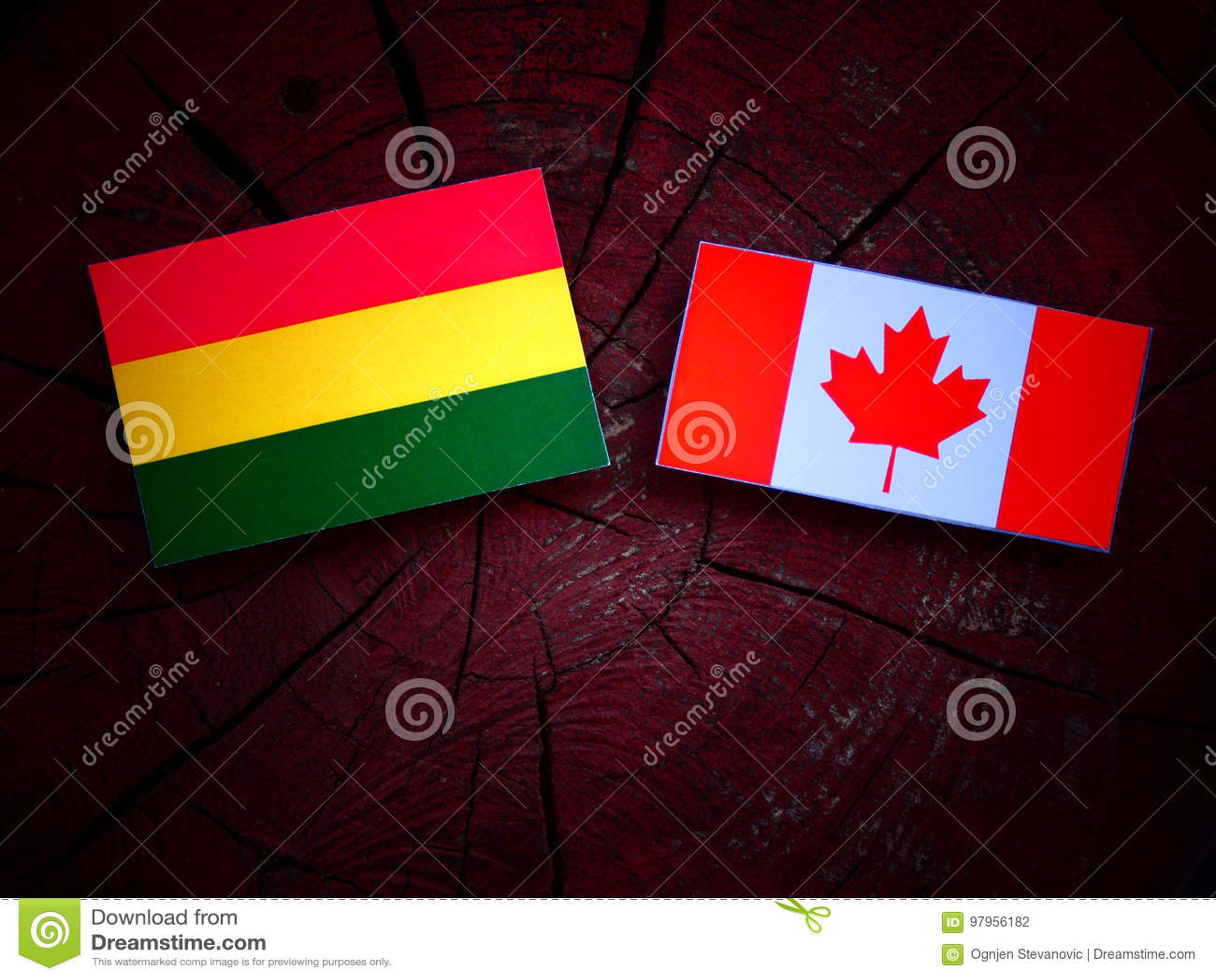 Boliwijki flaga z kanadyjczyk flaga na drzewnym fiszorku odizolowywającym