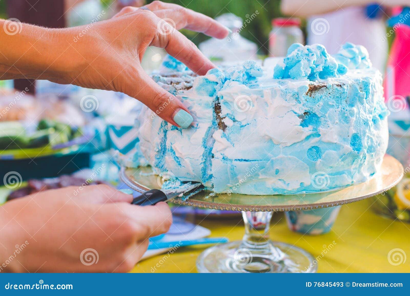 Bolo de aniversário para o aniversário Uma parte já cortou A faca corta o bolo Piquenique no parque em um dia ensolarado Azul do