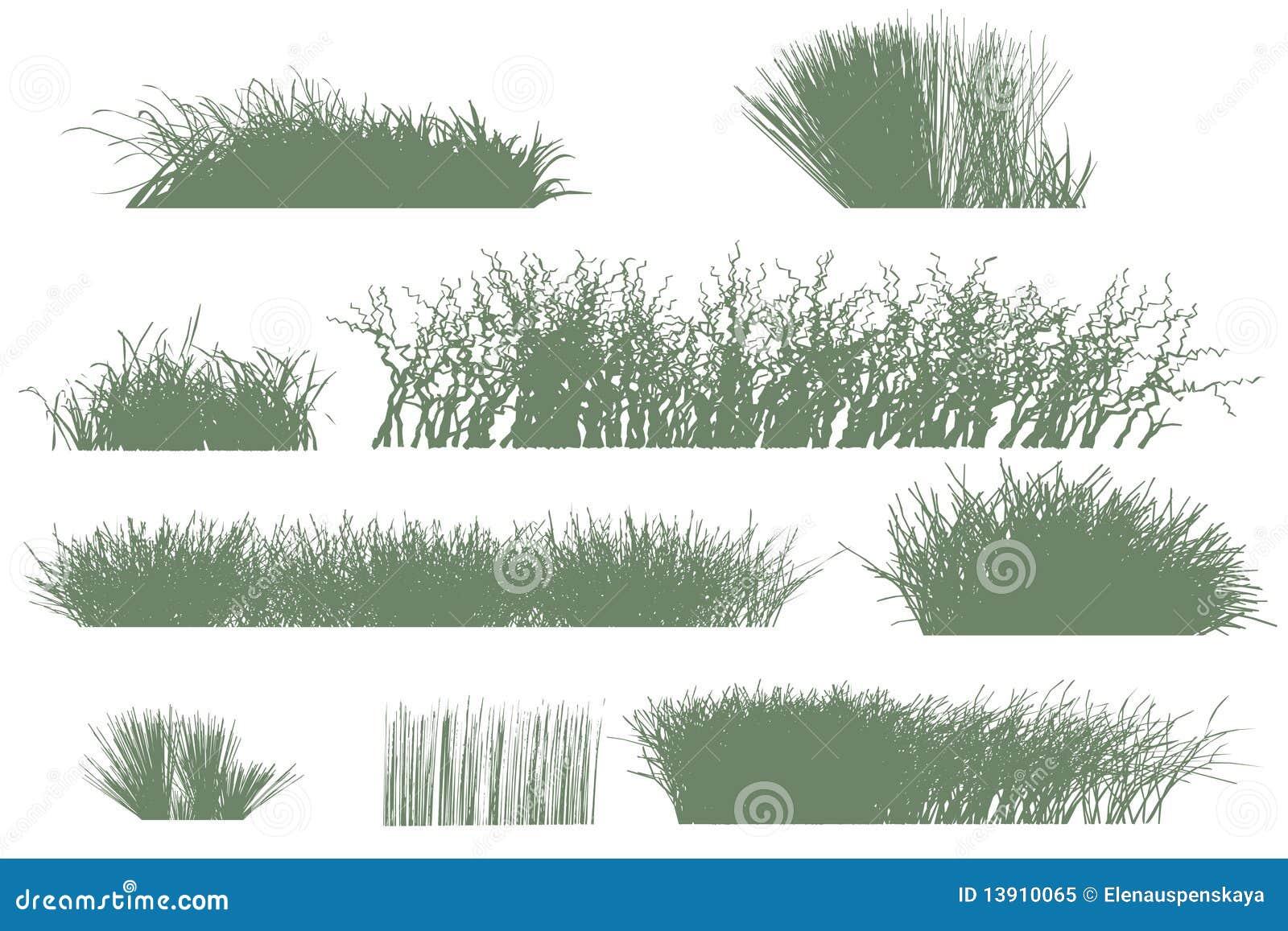 Bomen en grassilhouetten
