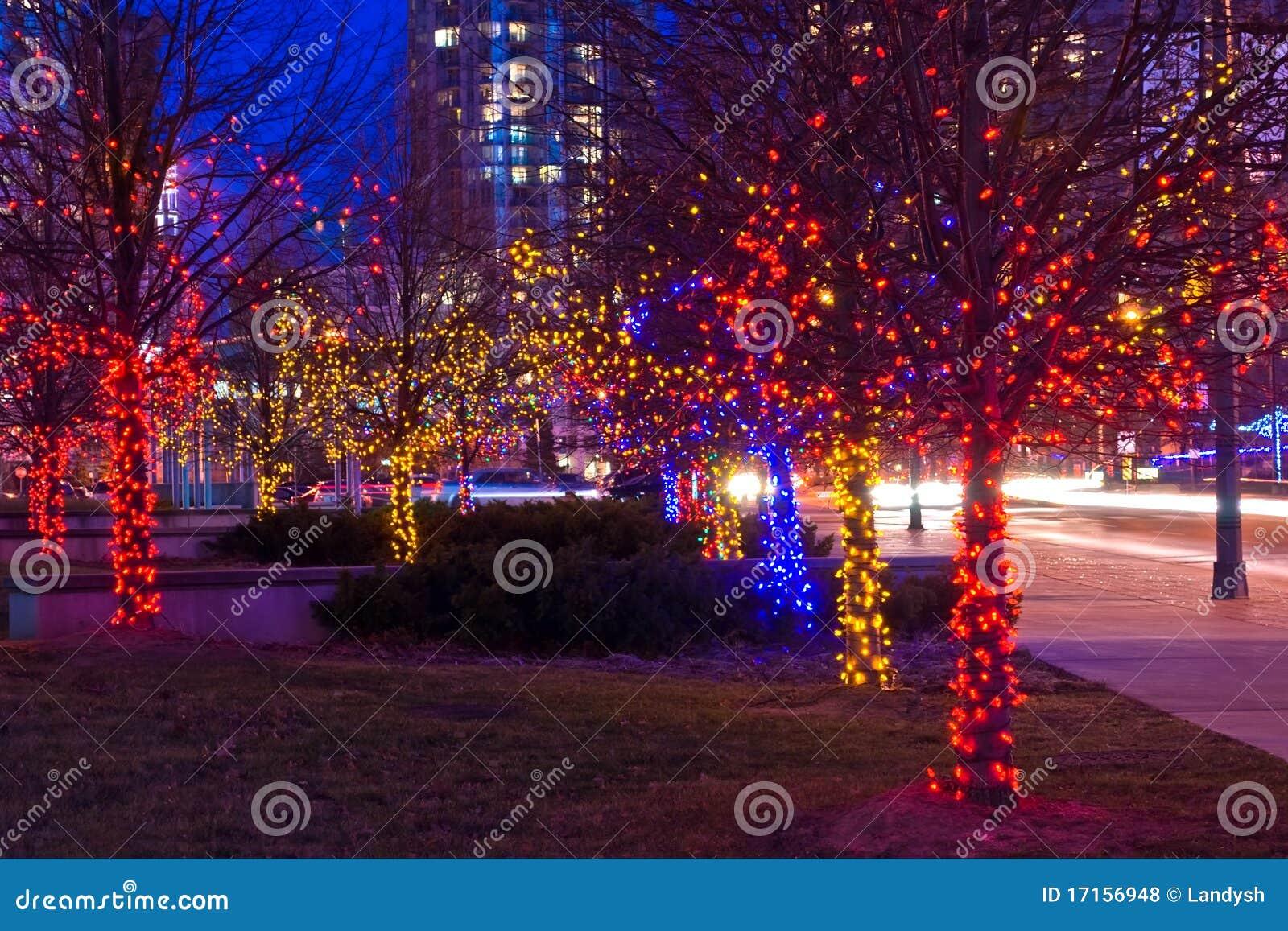 Bomen op straat die met Kerstmislichten wordt verfraaid