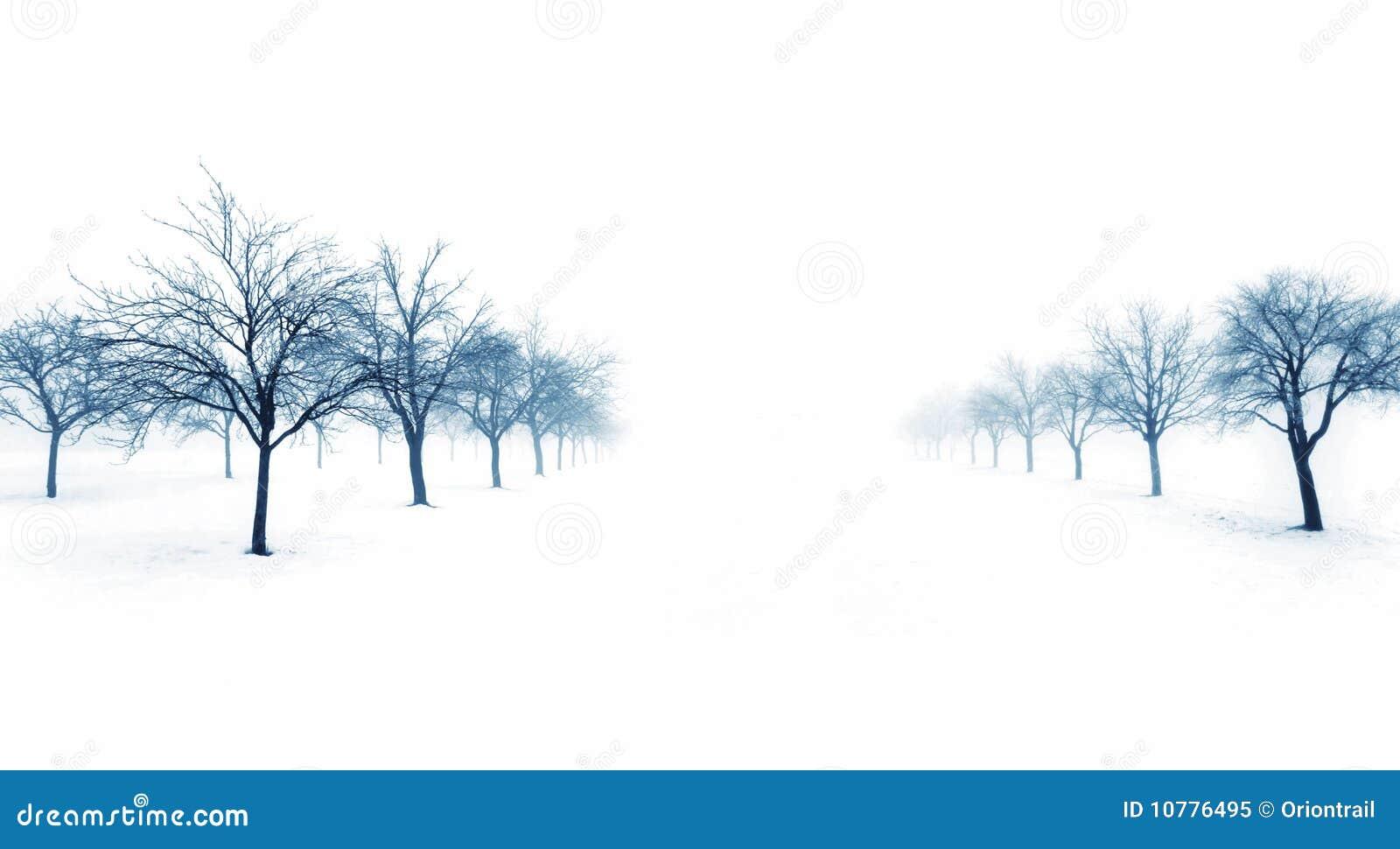 Bomen in sneeuw