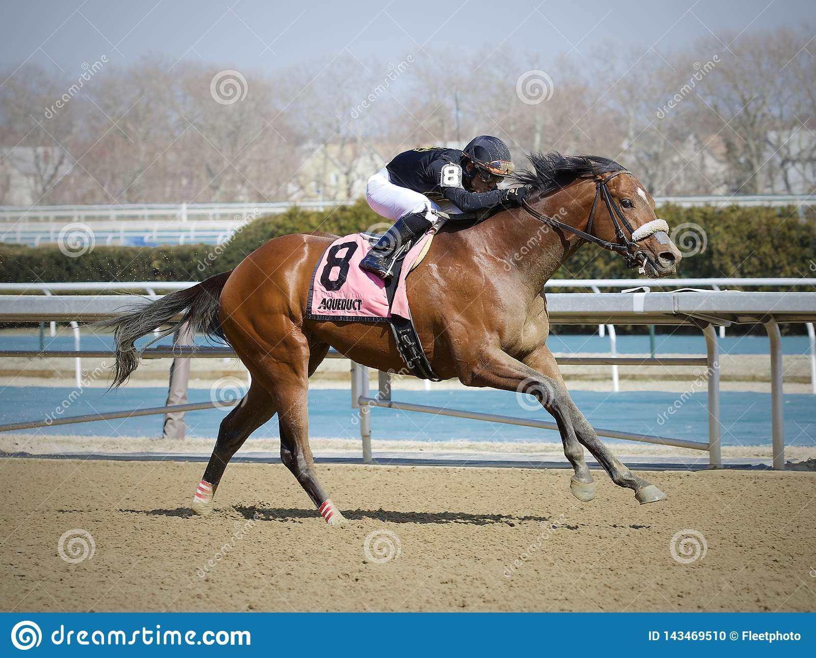 Bon Raison Winning den kika Tom Stakes