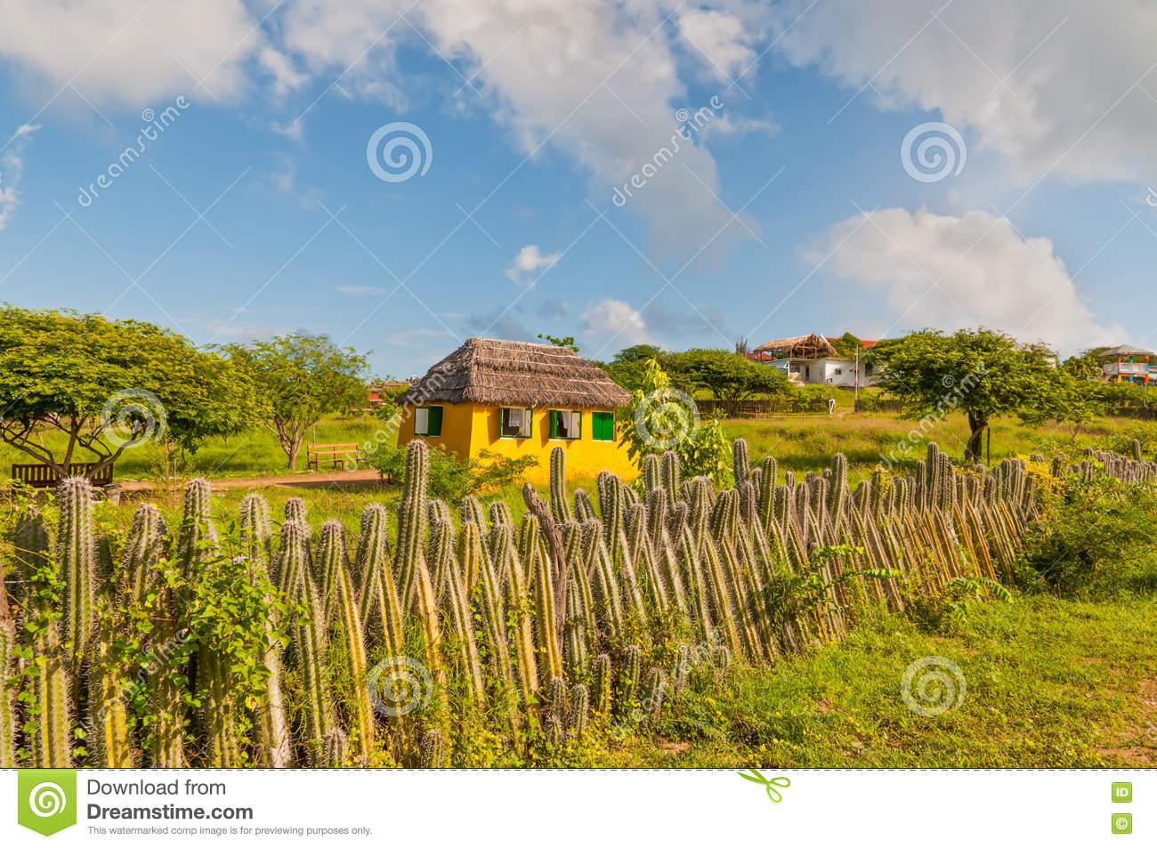 Bonaire yellow home and fence of cactus - Netherlands Antilles