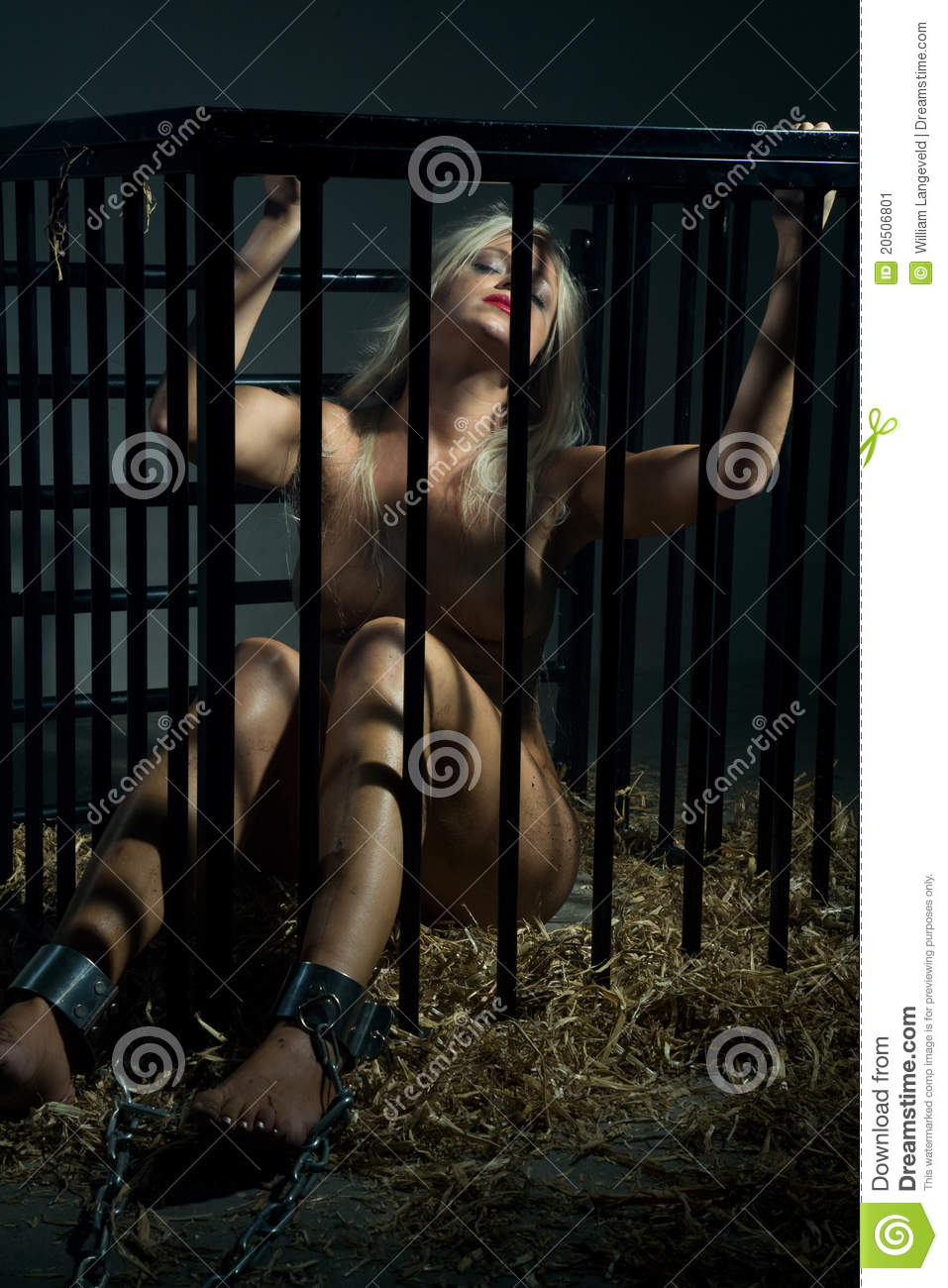 bondage art with beautiful nude woman in cage stock image - image of