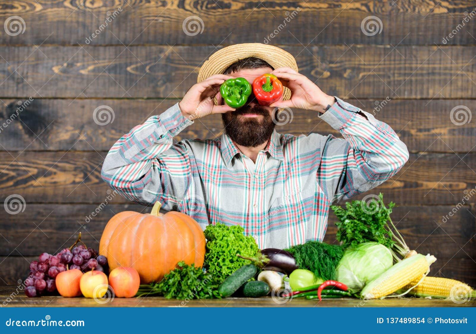 Bonde som har rolig träbakgrund Skörd för manhållpeppar som rolig emotionell grimas Pepparskördbegrepp chili