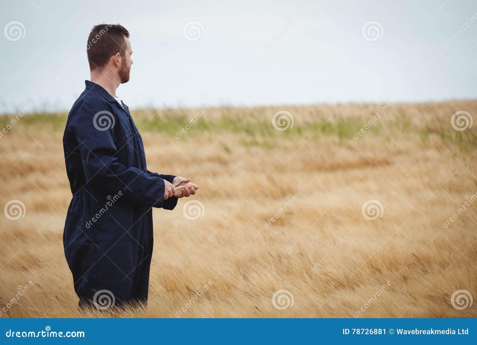 Bondeanseende i fält och sesikt