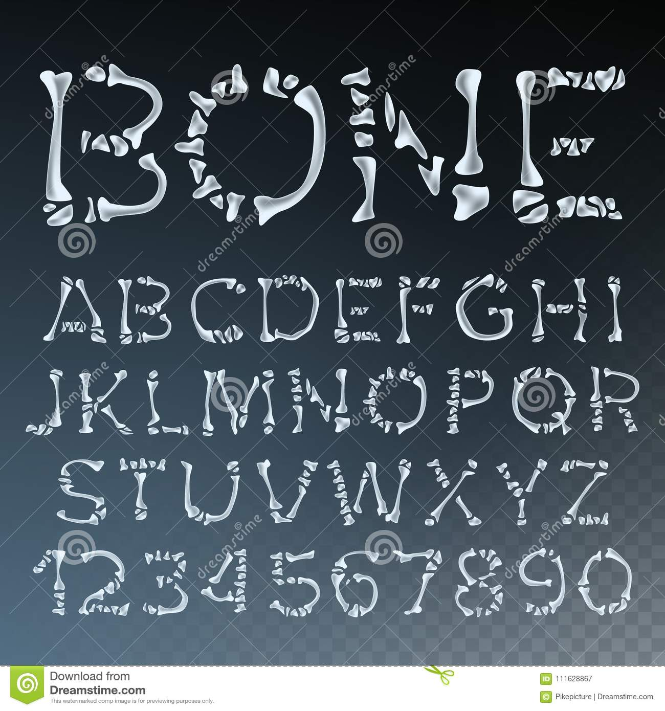 Anatomy Of Hell In English bone font vector. letters anatomy. abc alphabet. skeleton