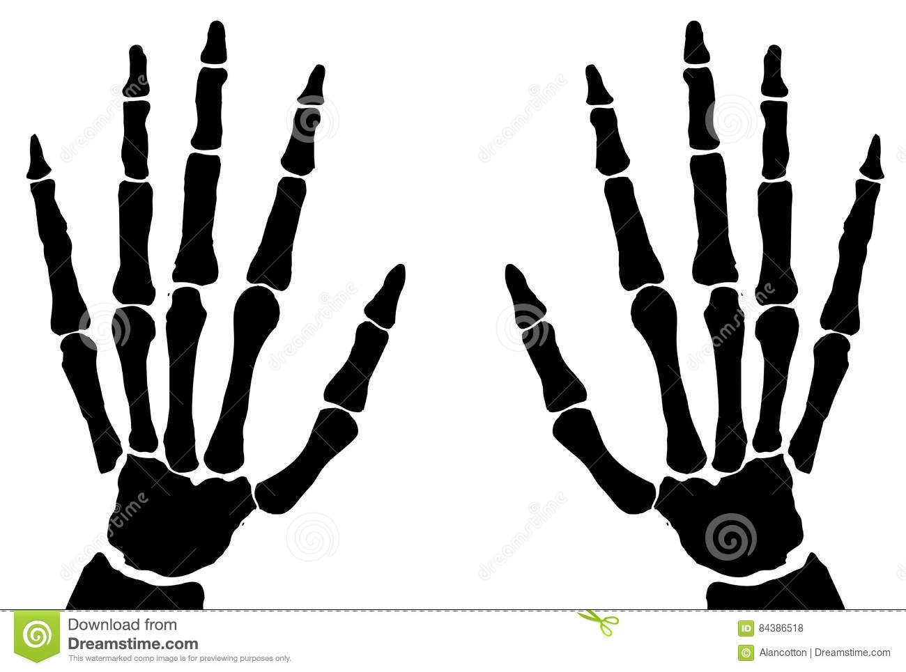 Bone Hands Isolated Stock Vector Illustration Of Transparent 84386518