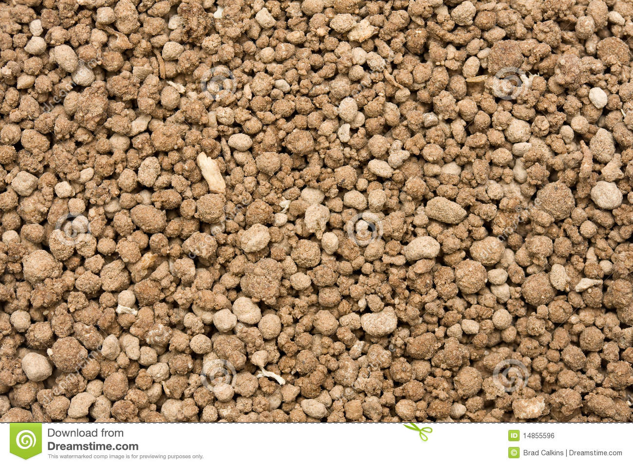 Bone Meal Production In Nigeria; The Feasibility Report.