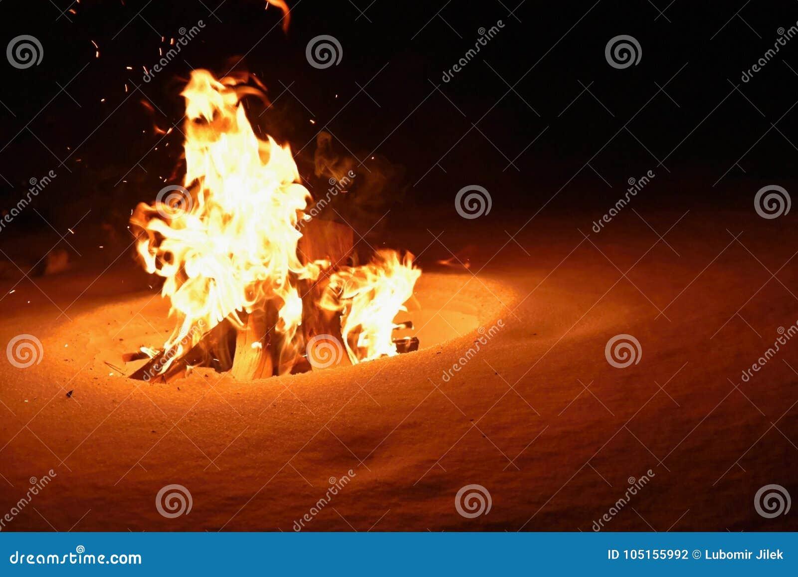 Bonfire Fogo ardente no inverno na neve e na noite