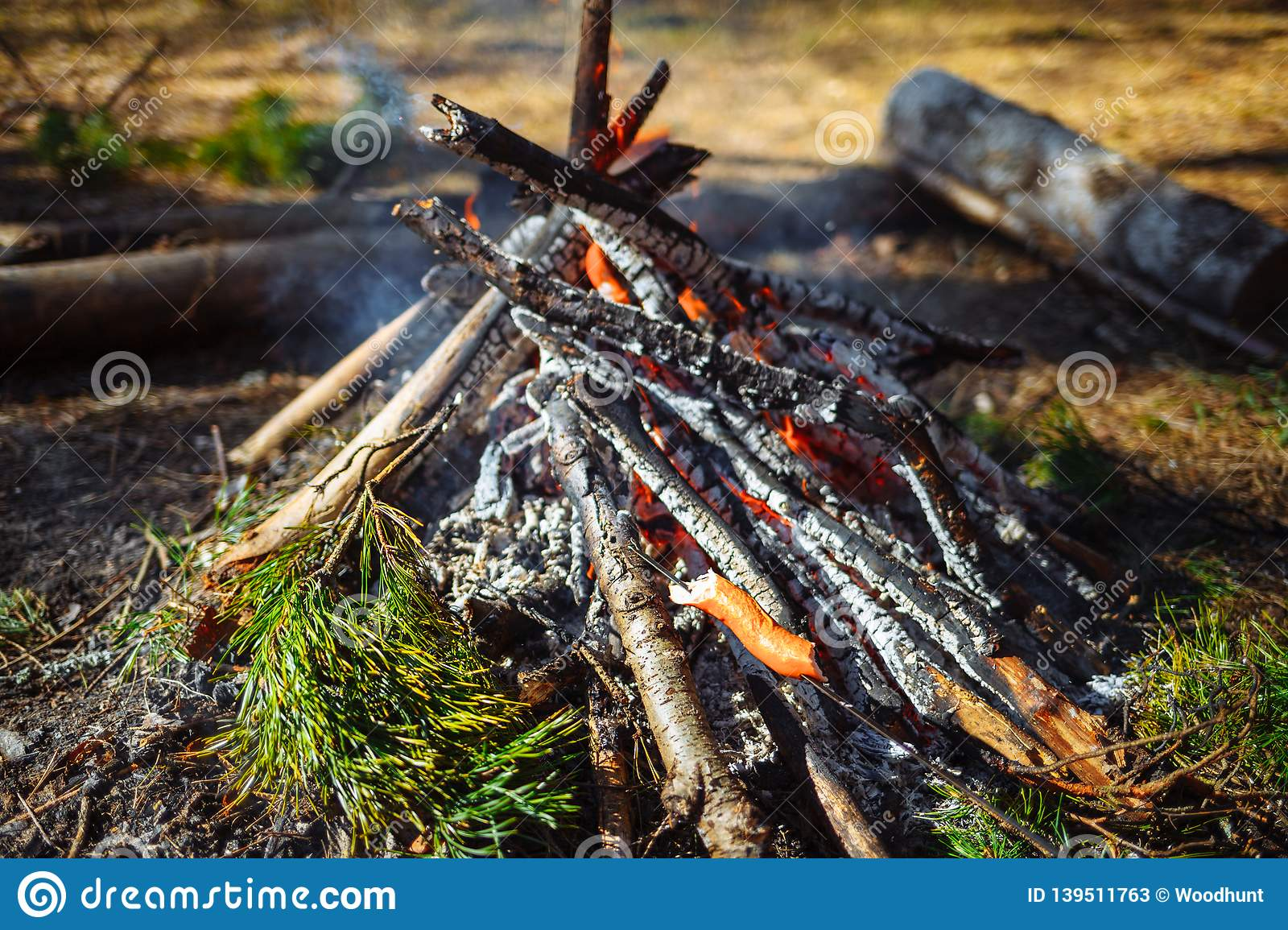 Bonfire in the forest. On the fire roasted suck