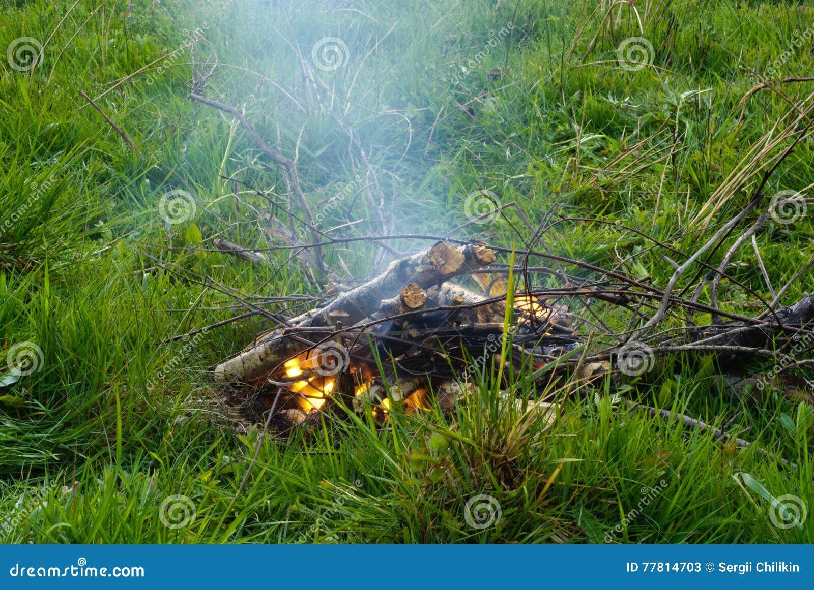 Bonfire Grama verde Parada na caminhada Fumo da fogueira