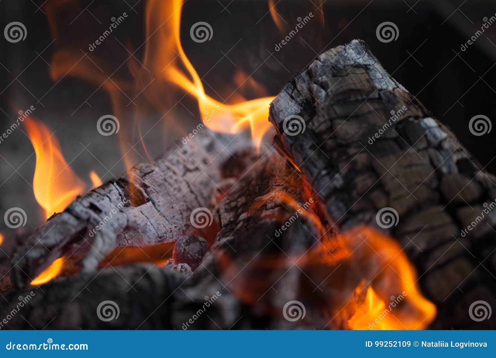 Bonfire Madeira do incêndio Grelhando e cozinhando o fogo Woodfire com chamas