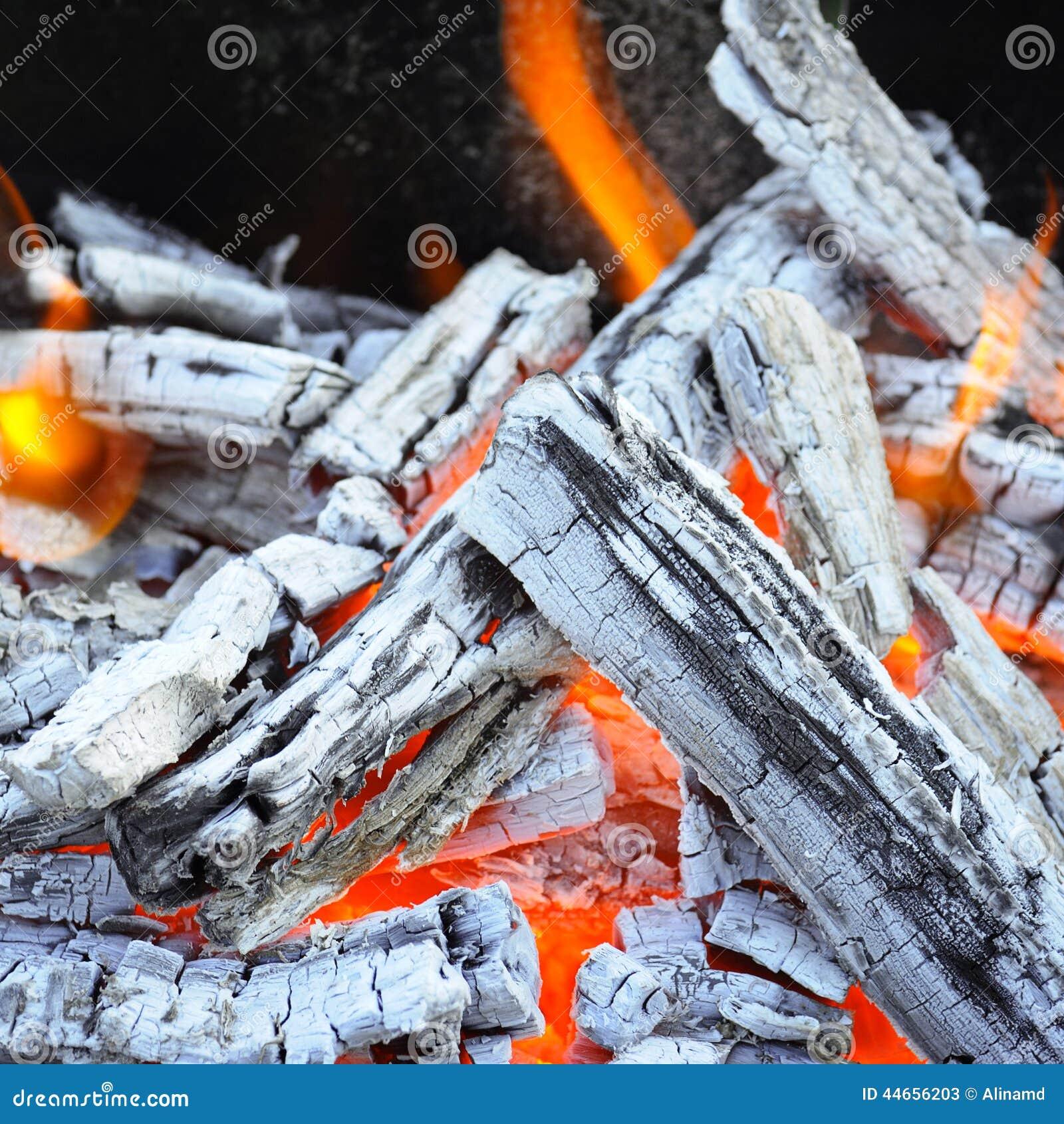 Bonfire and wood coal