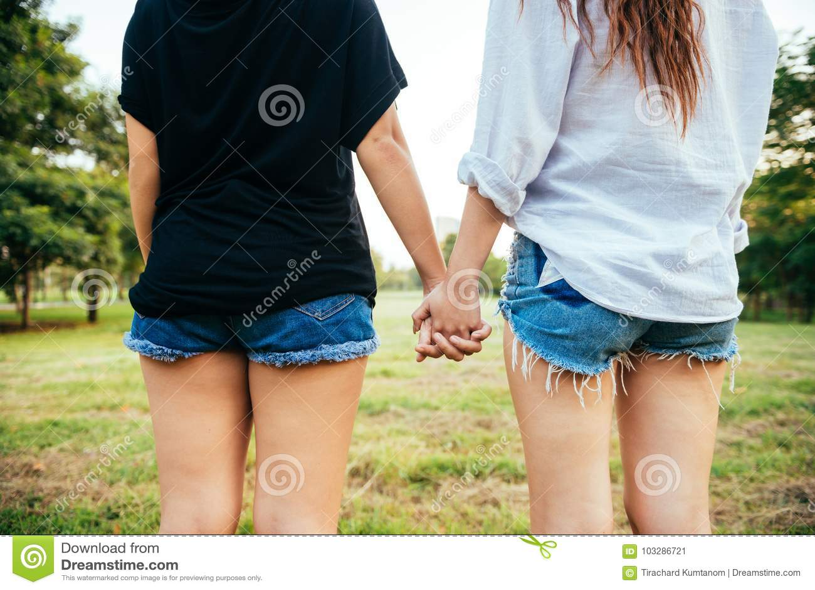 Bonheur lesbien de moments de couples de femmes de LGBT De femmes de couples concept lesbien ensemble dehors