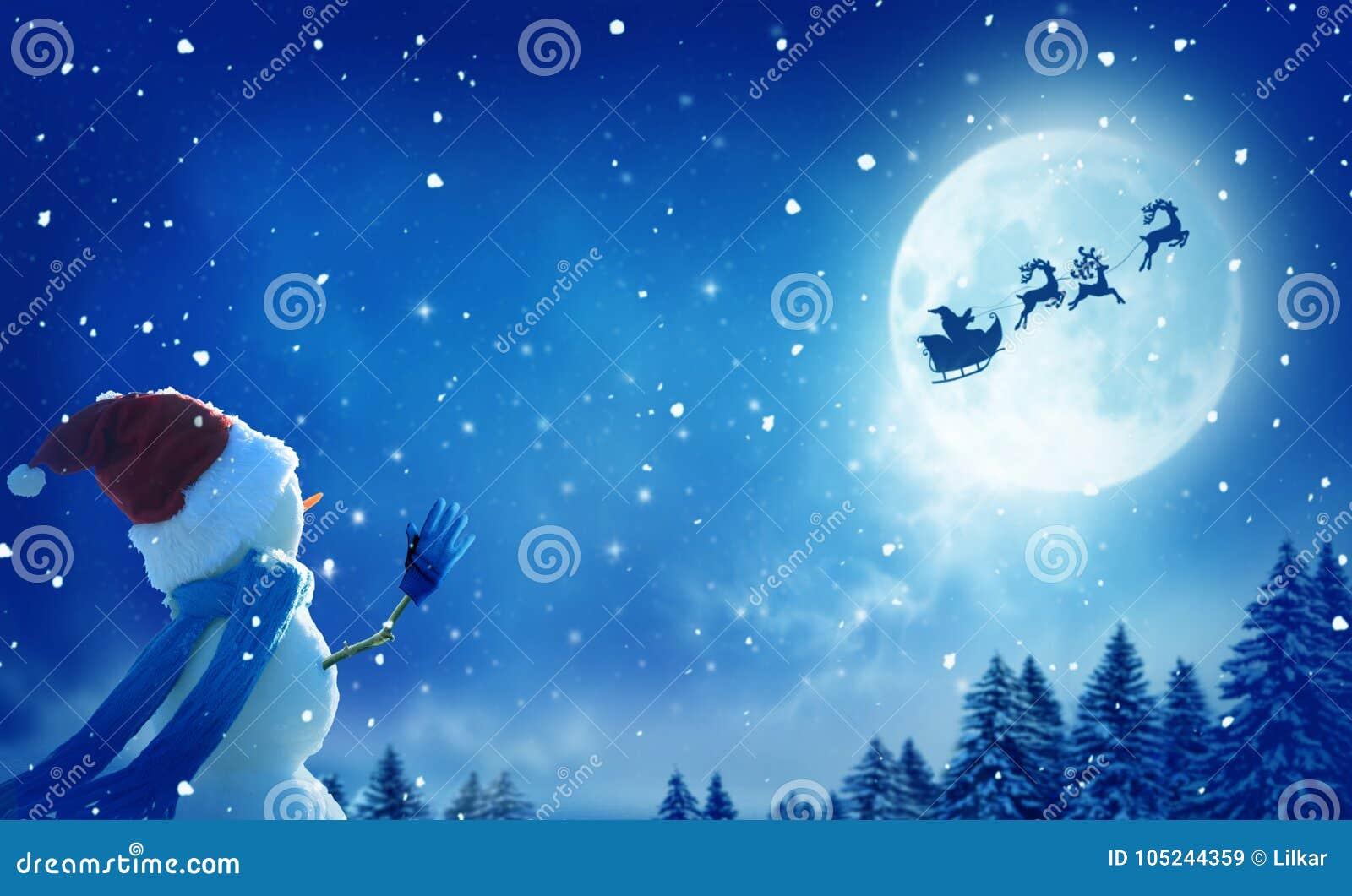 Bonhomme De Neige Heureux Se Tenant Dans Le Paysage De Noël